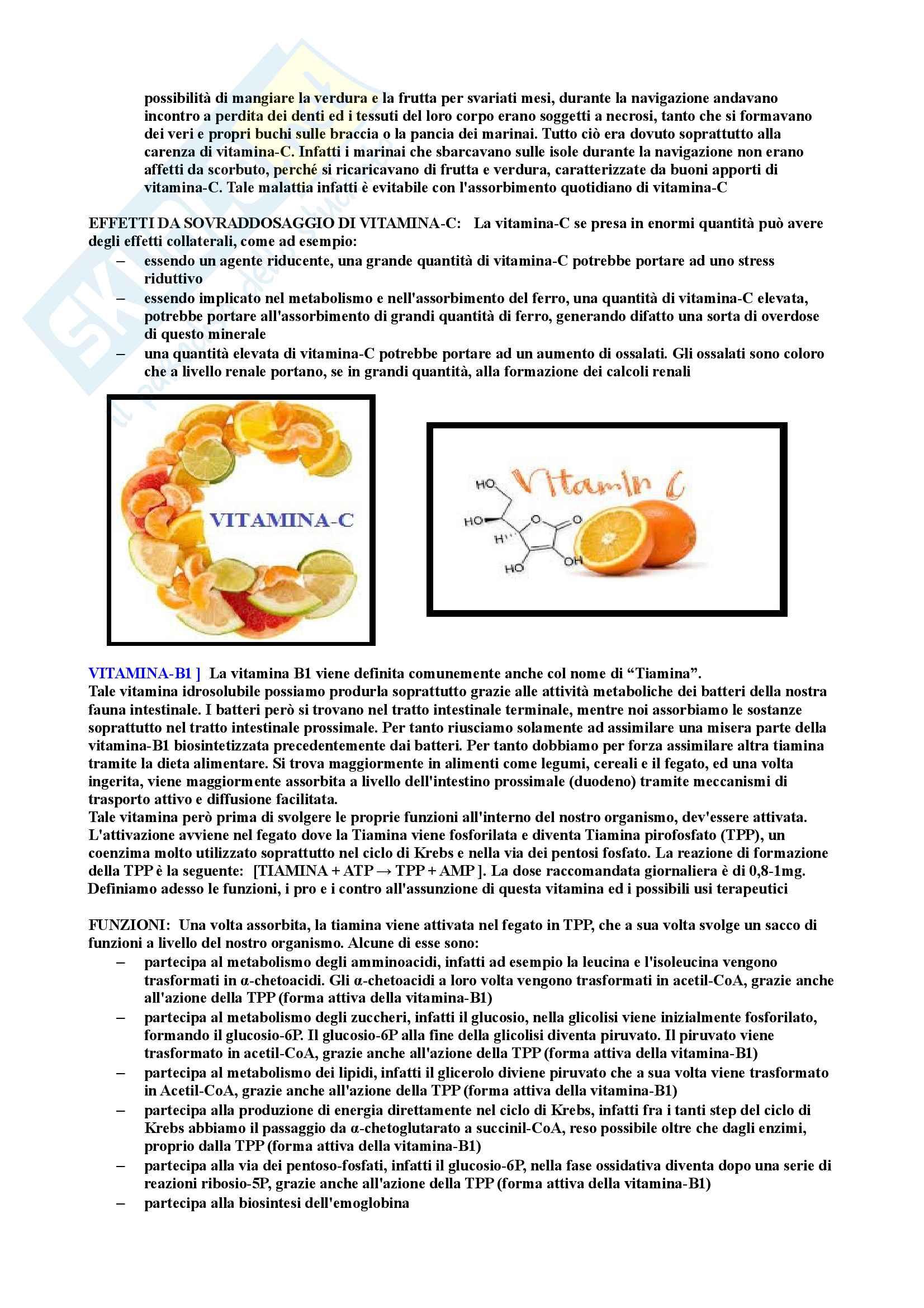 Riassunto di Biochimica degli alimenti Pag. 6