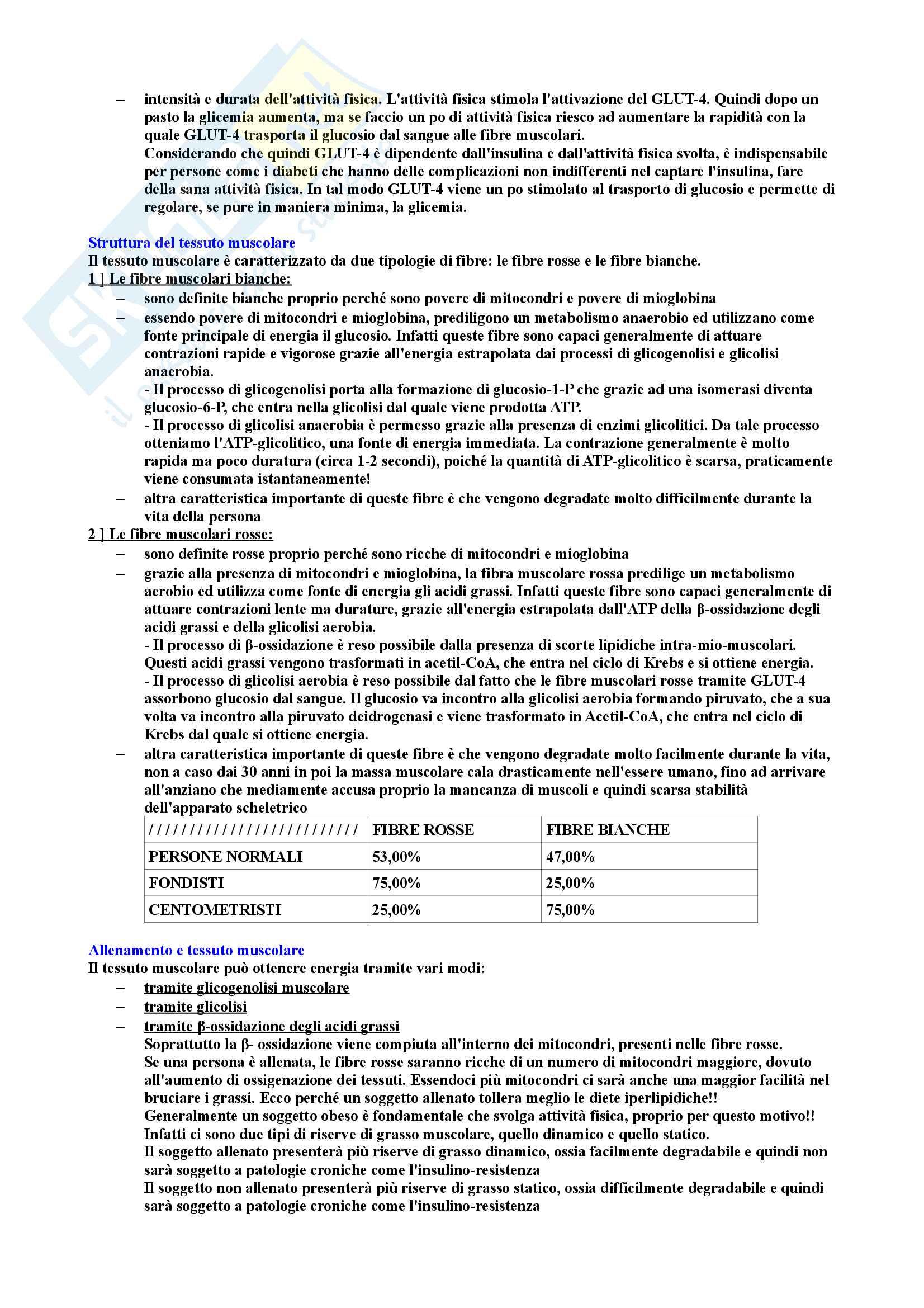 Riassunto di Biochimica degli alimenti Pag. 96