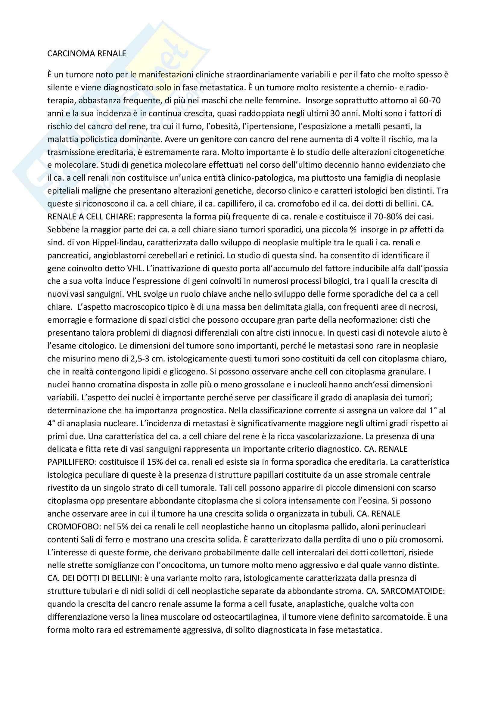 Anatomia patologica - il carcinoma renale