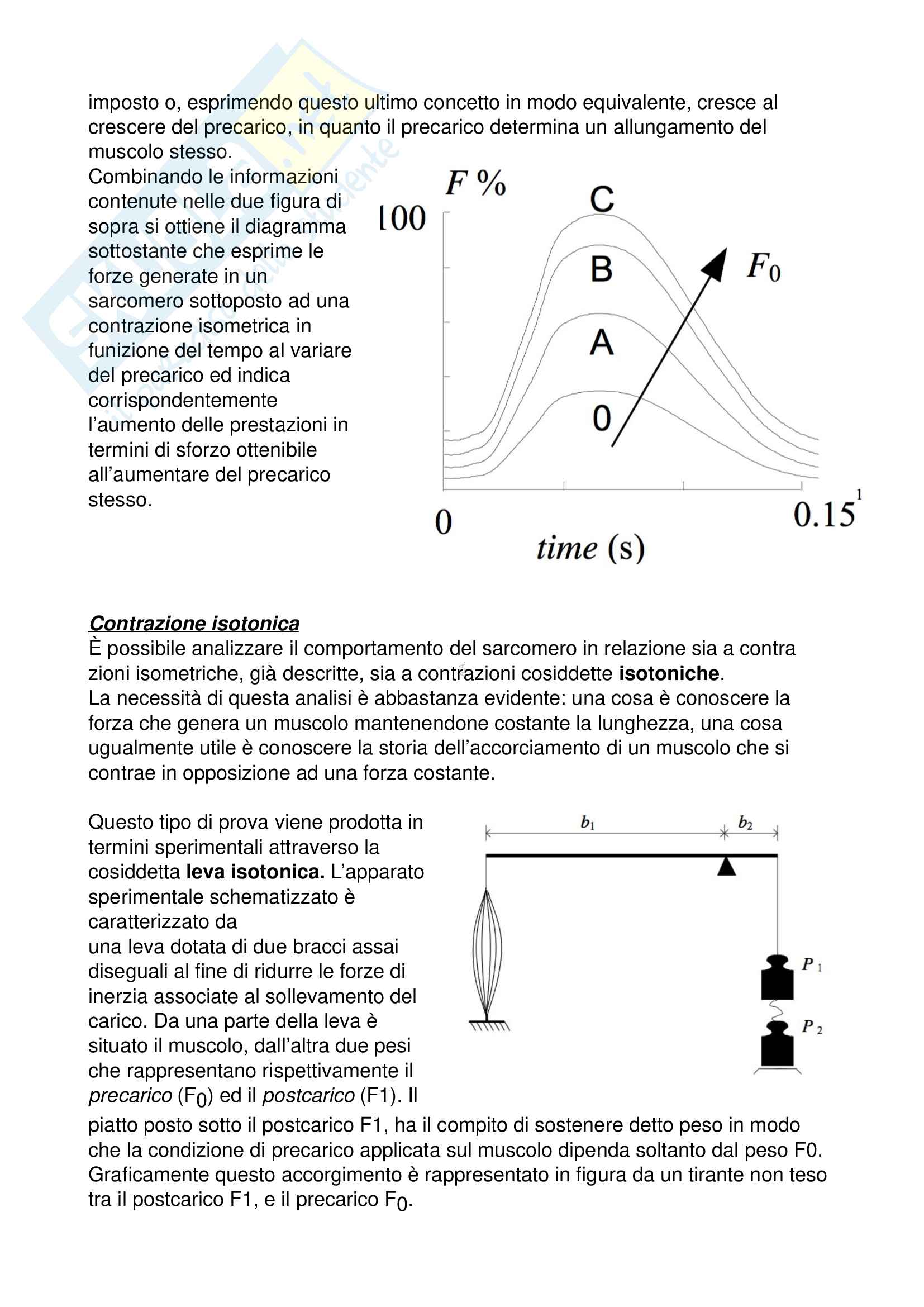 Biomeccanica (Appunti) Pag. 31