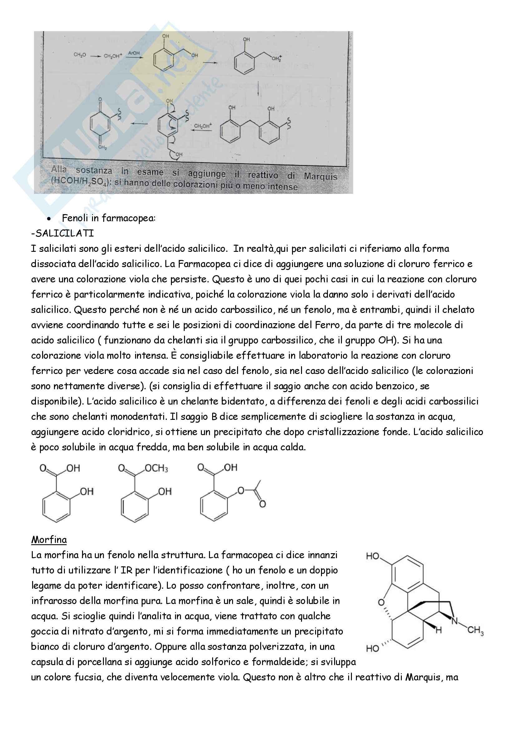 Appunti di Analisi chimico-farmaceutica II Pag. 111
