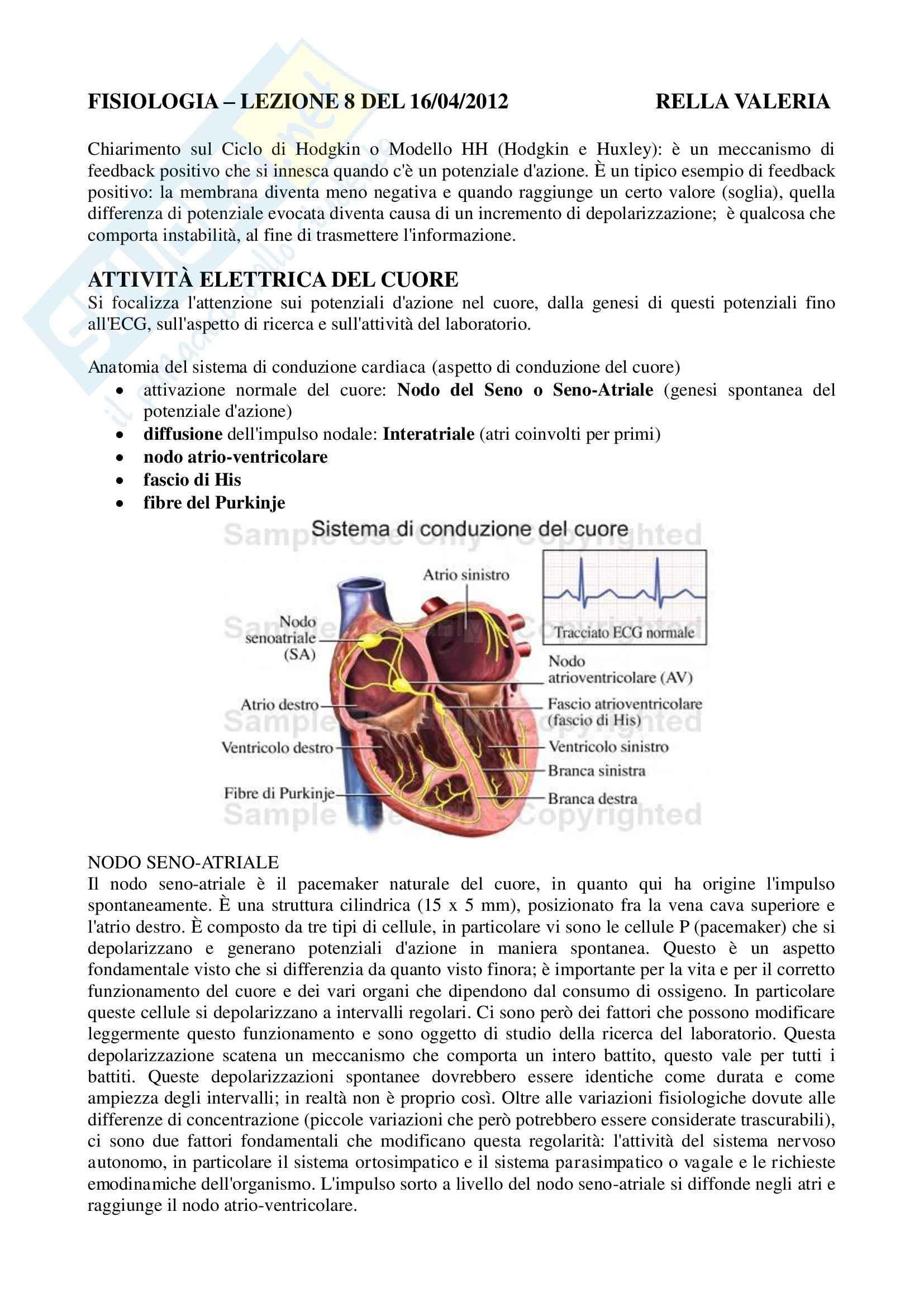 Fisiologia umana I - attività elettrica del cuore