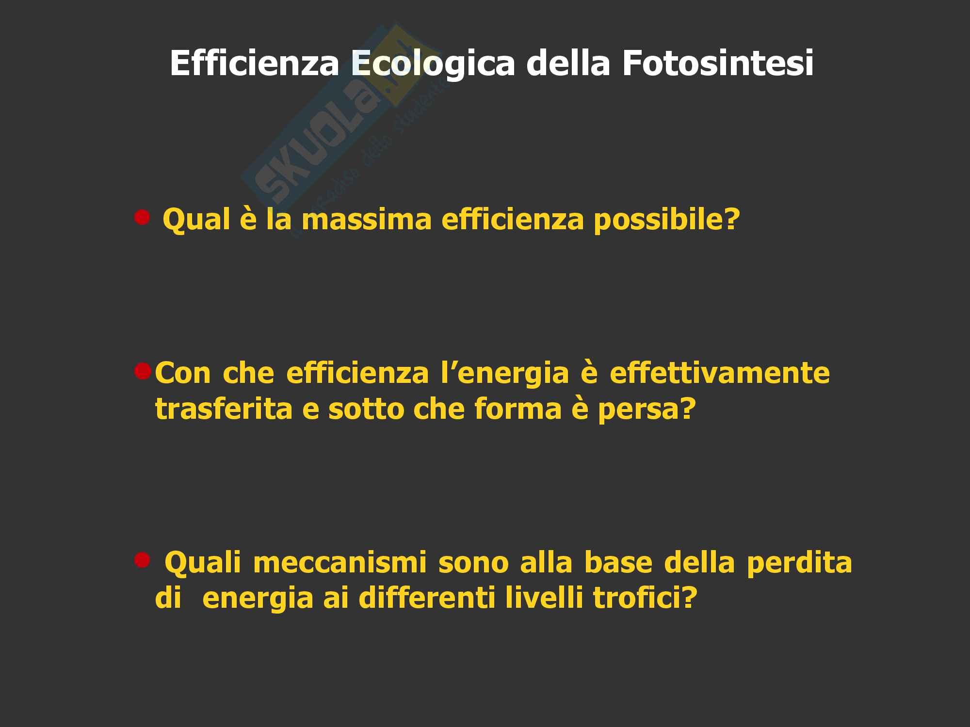 Ecologia: Efficienza ecologica della fotosintesi