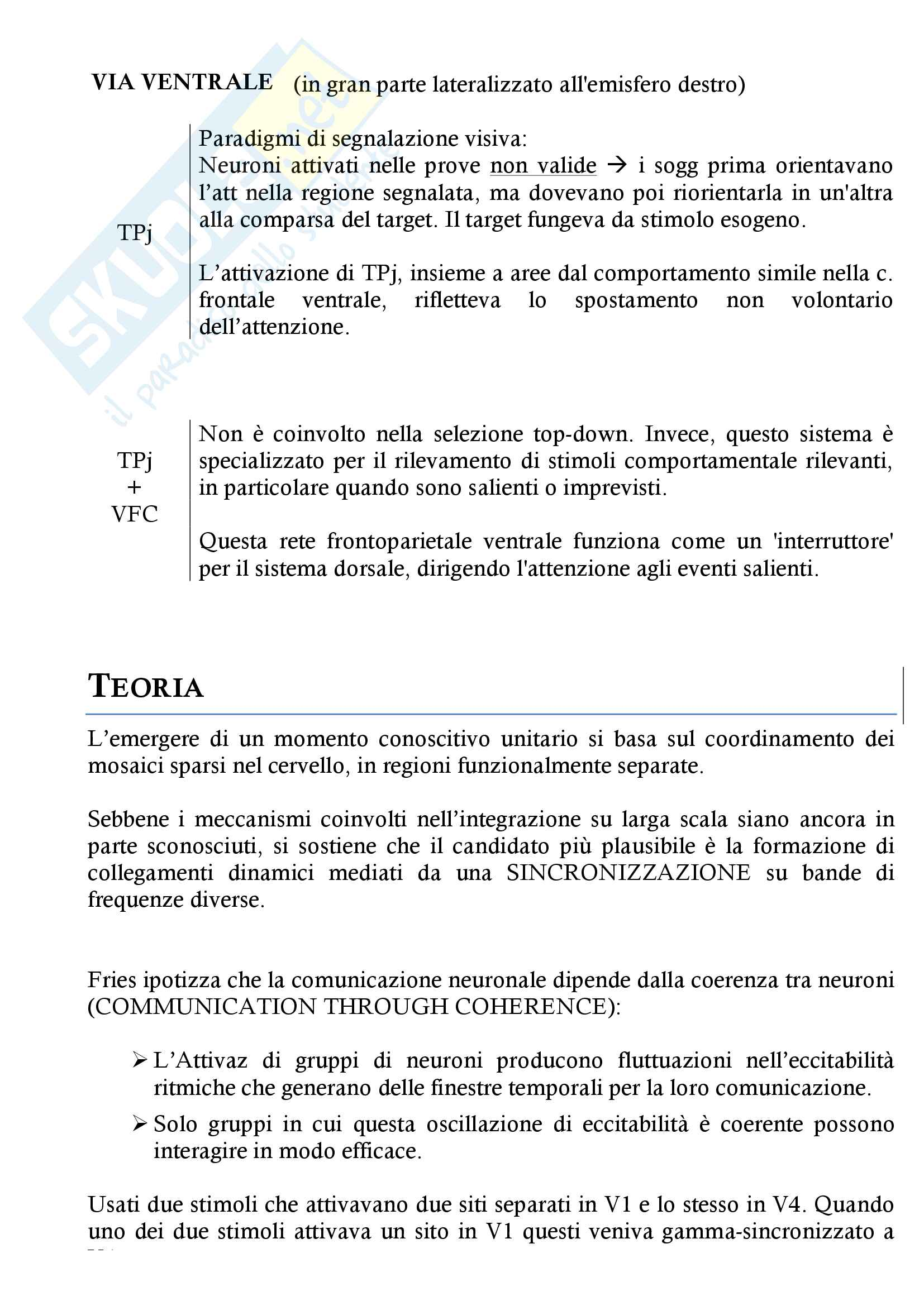 Consapevolezza visiva, Attenzione, Rappresentazione mentale del corpo, Integrazione multisensoriale Pag. 21