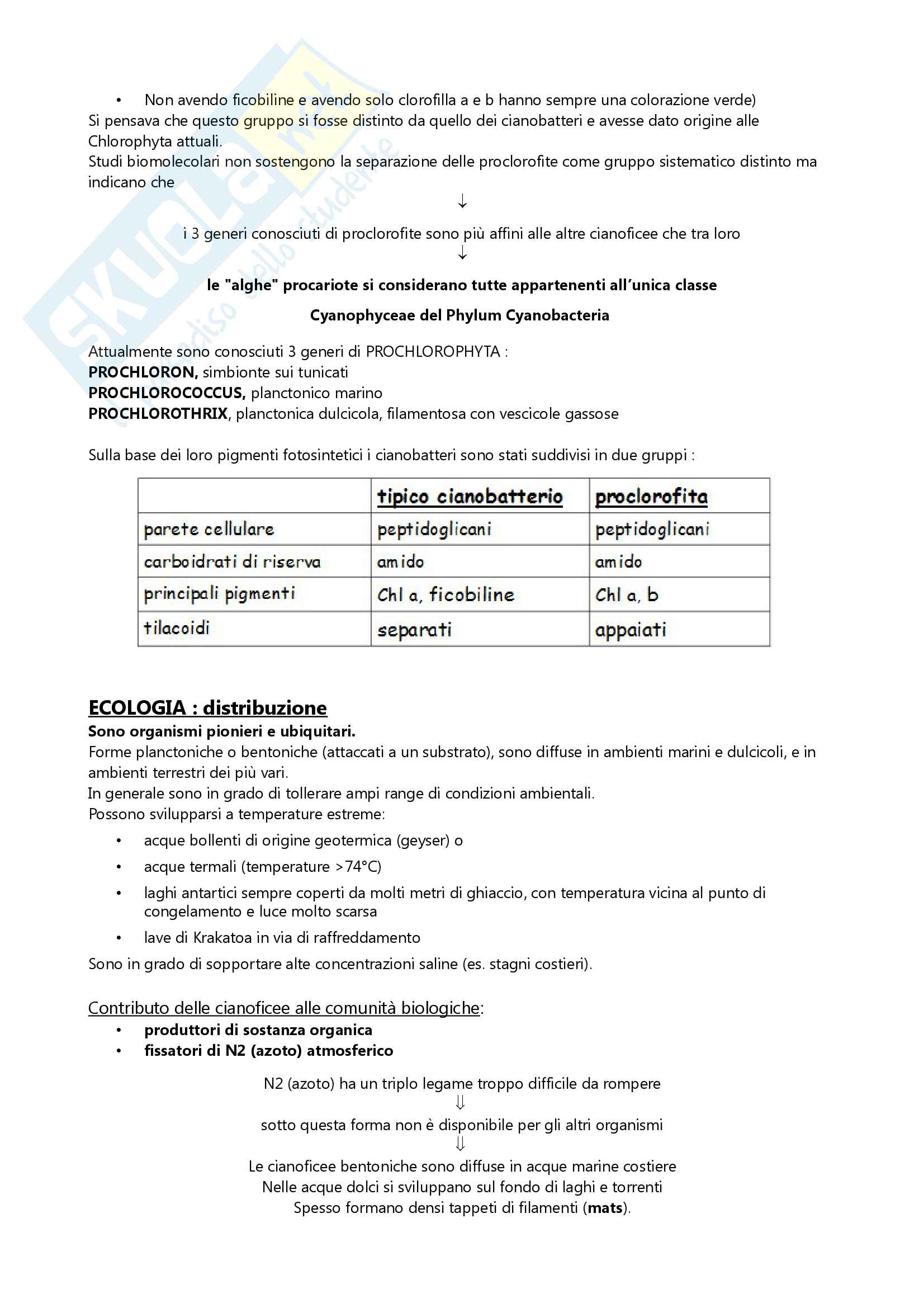 Botanica sistematica Pag. 6