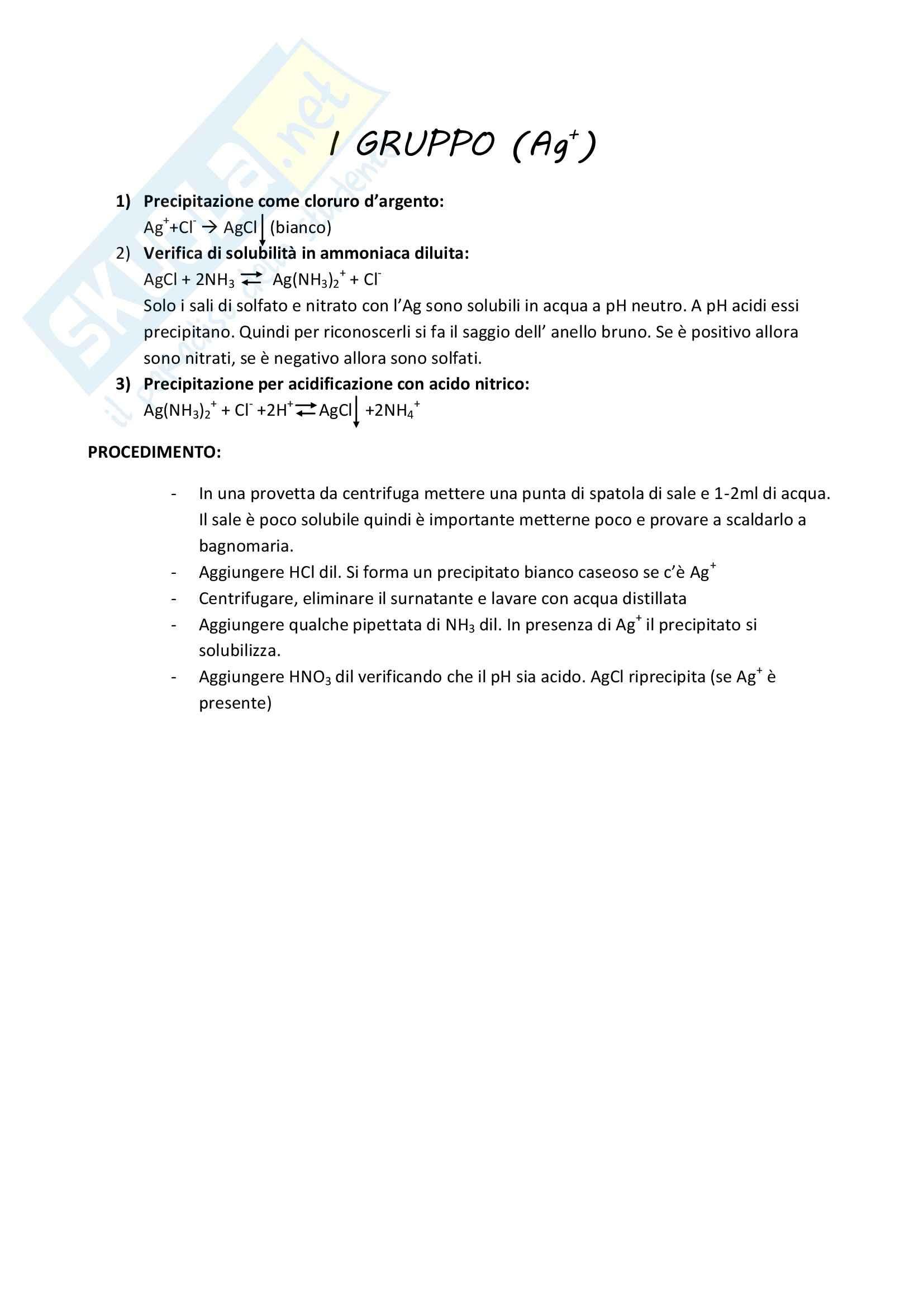 Analisi qualitativa cationi Pag. 2