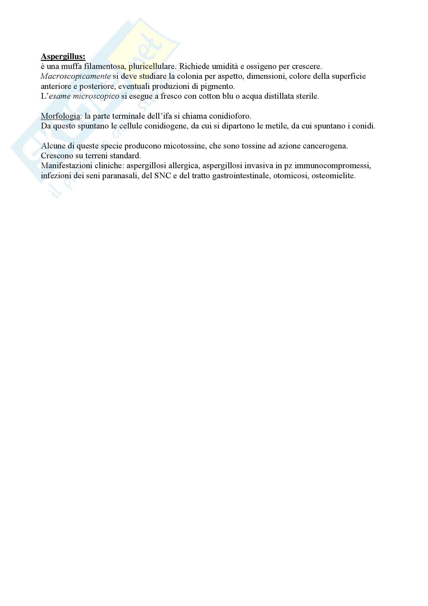appunto G. Riccardi Microbiologia molecolare
