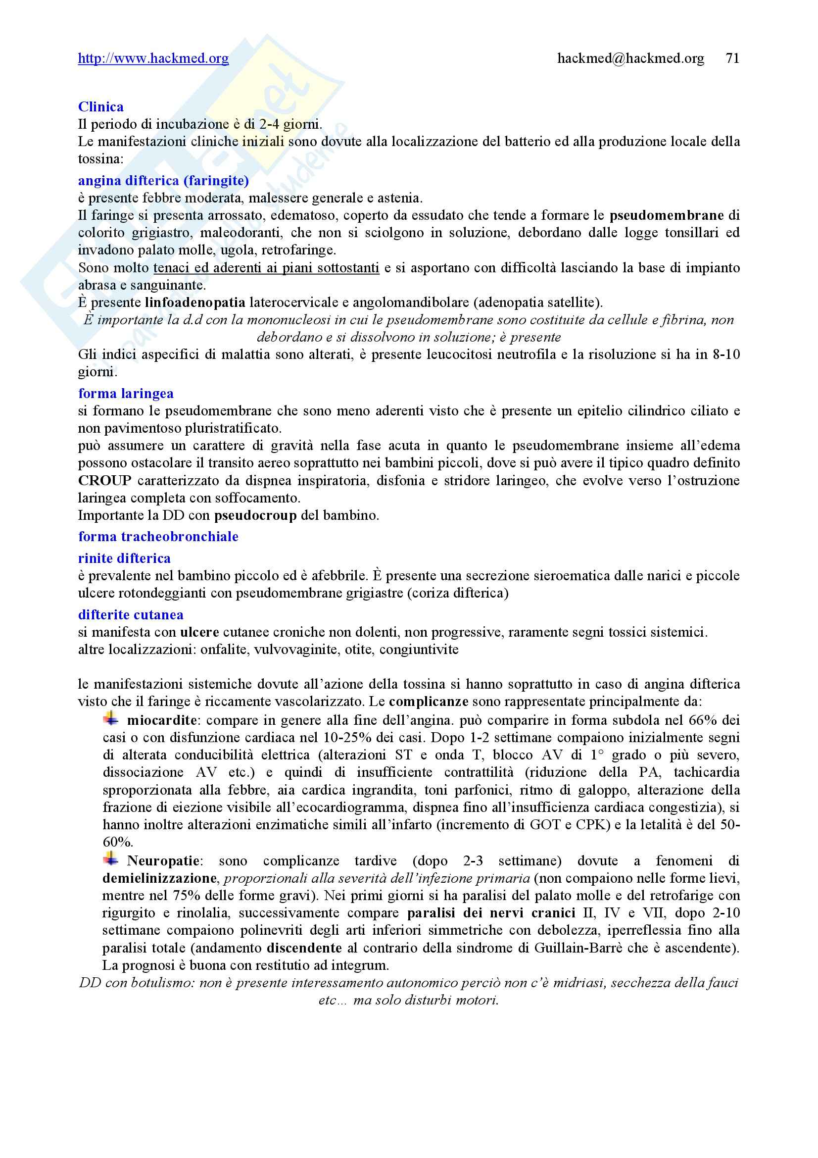 Malattie infettive – Manuale completo Pag. 71
