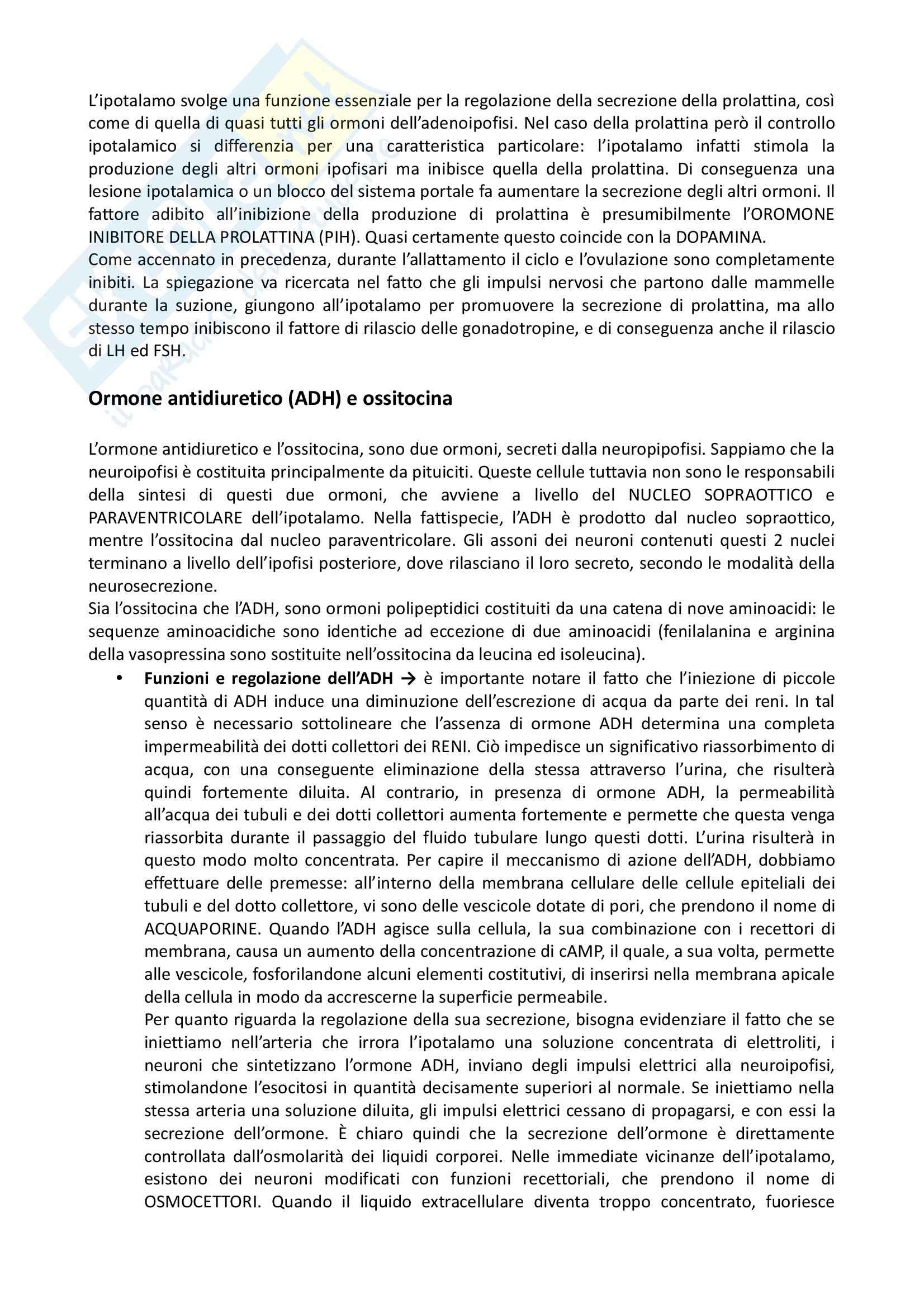Fisiologia - fisiologia sistemica Pag. 131