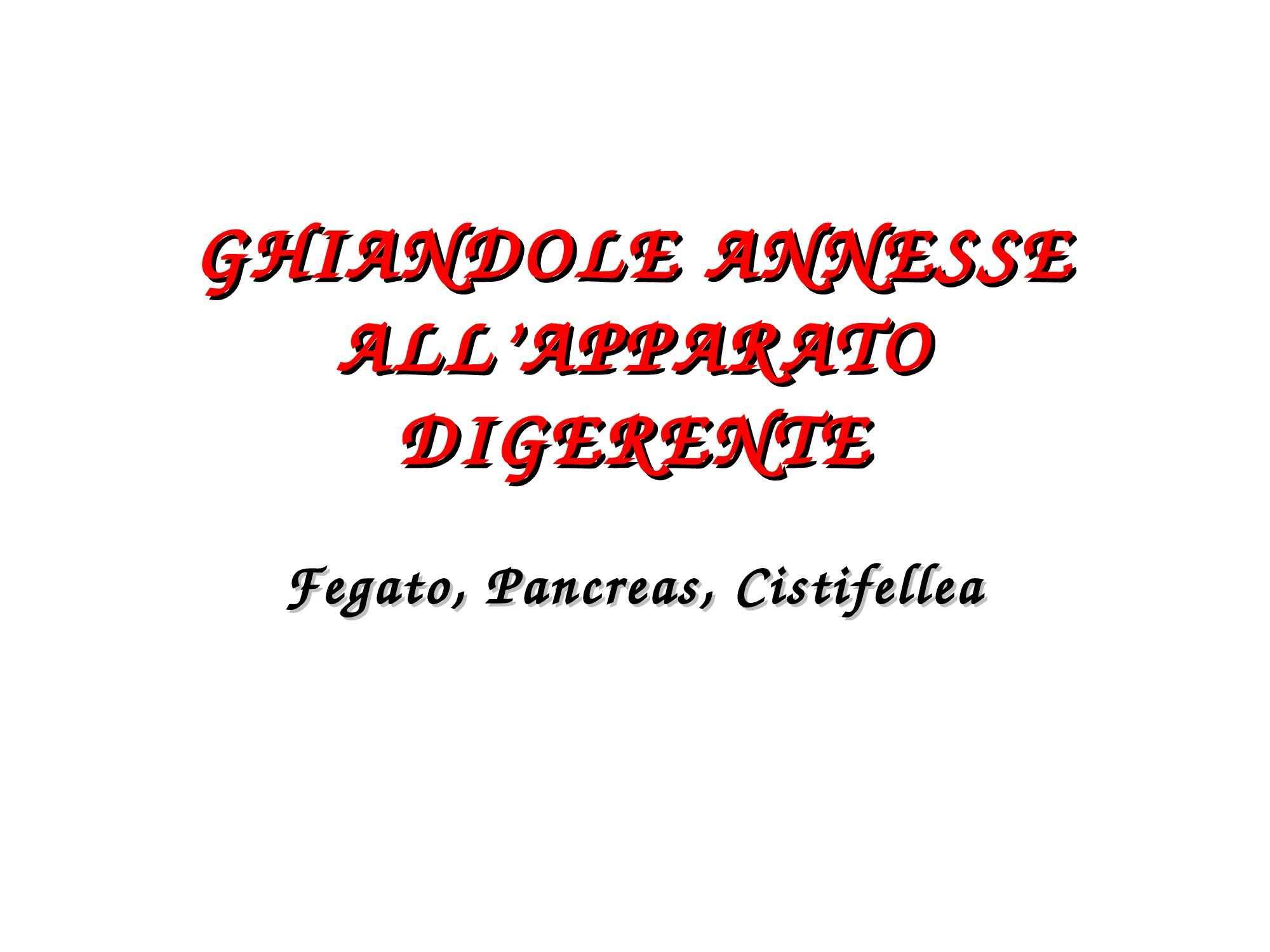 Ghiandole dell'apparato digerente - Fegato e pancreas
