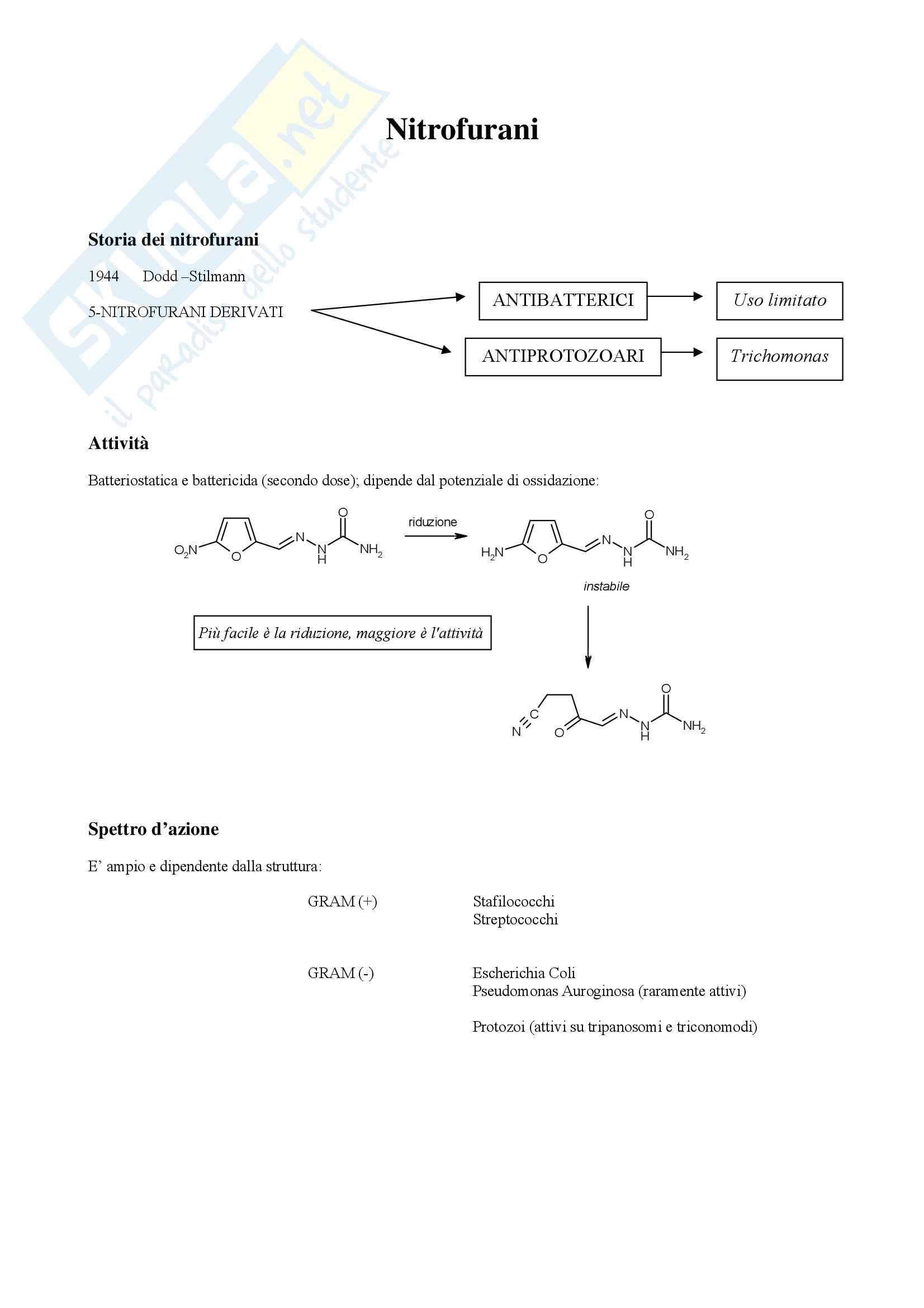 Chimica farmaceutica e tossicologica - nitrofurani