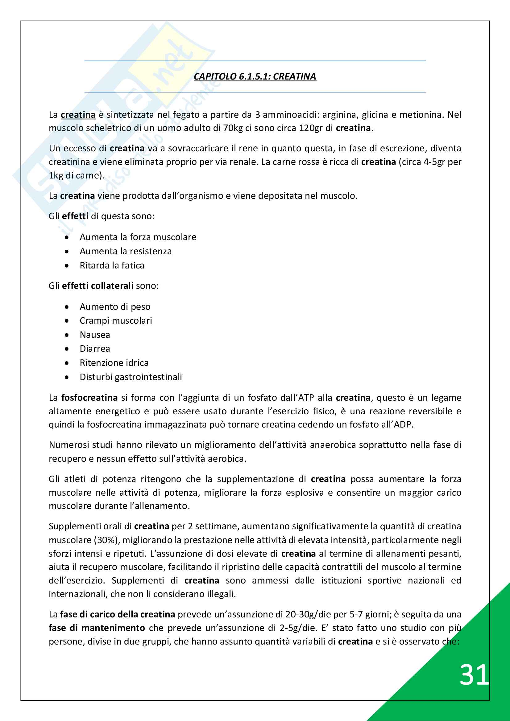 Nutrizione e Sport - 3° Anno Pag. 31