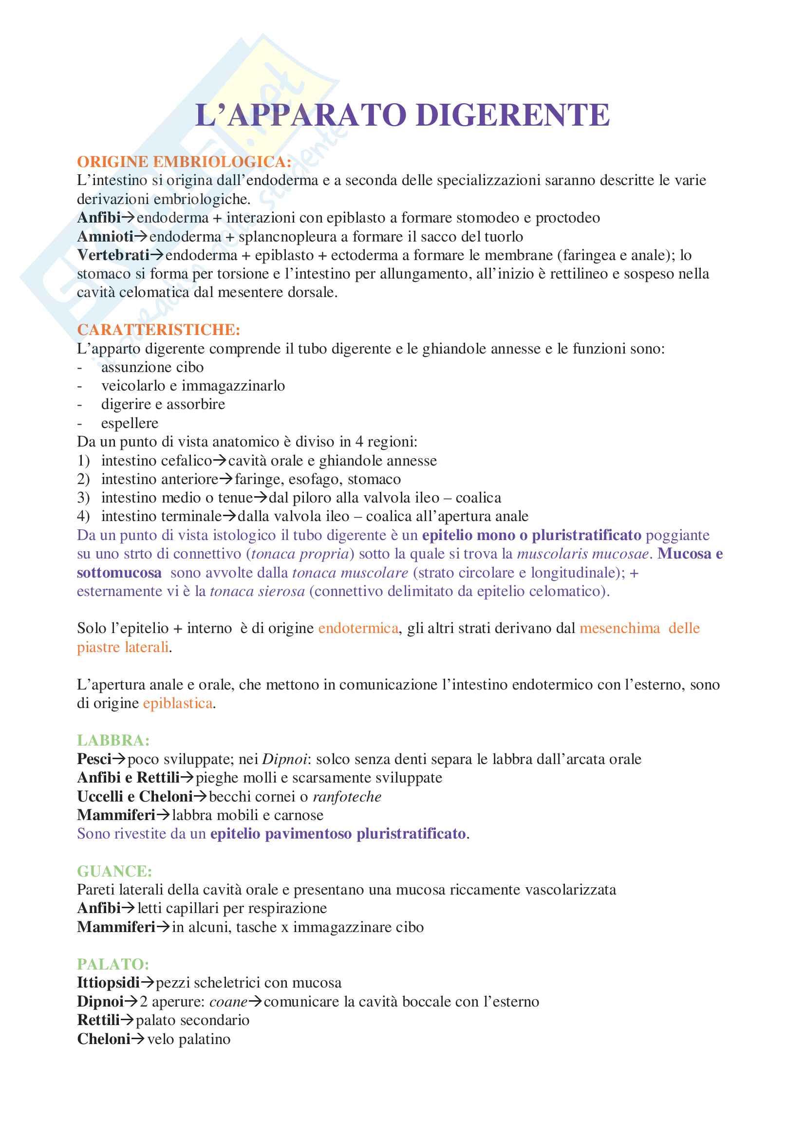 Appunti di Anatomia Comparata Pag. 2