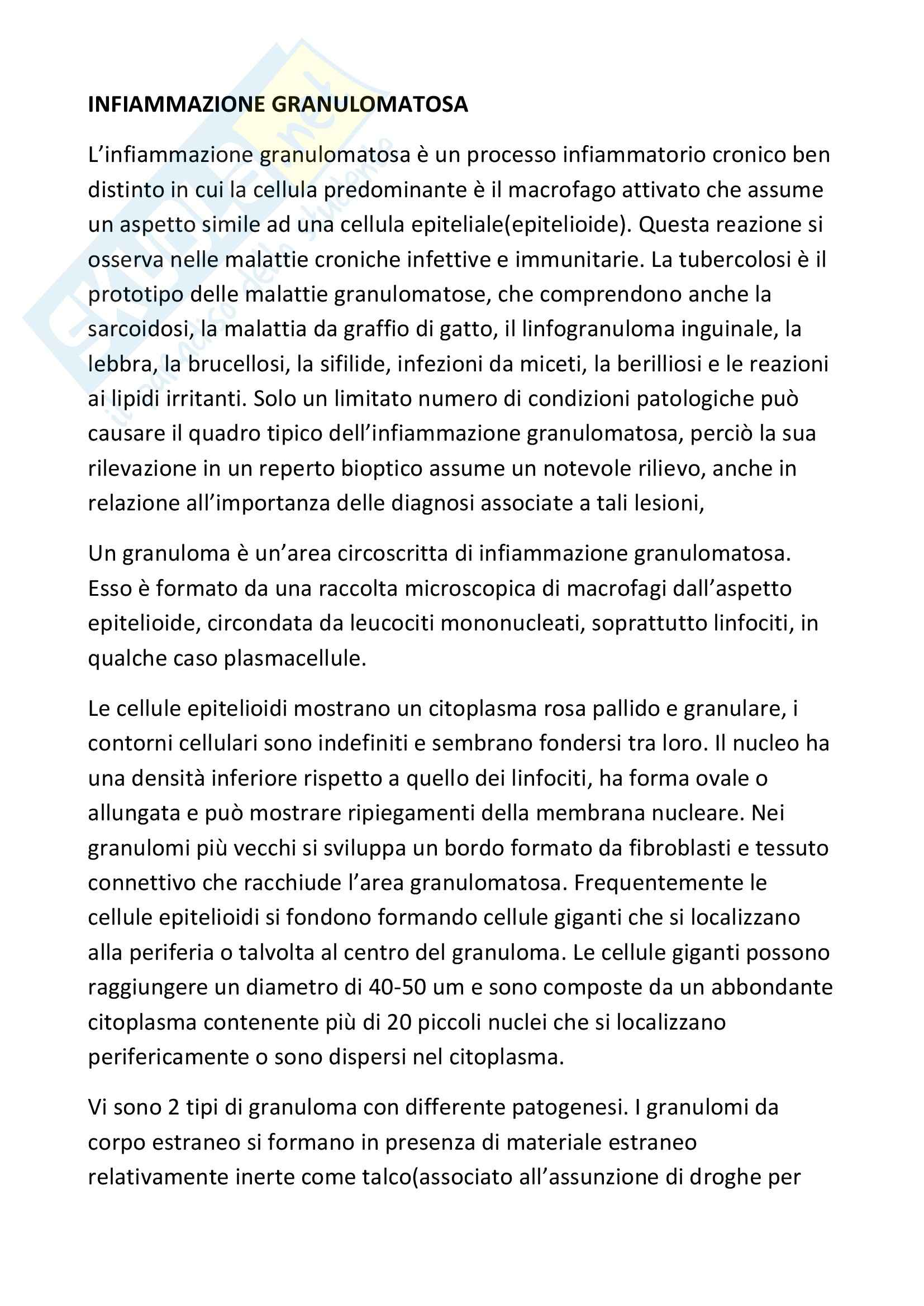 Anatomia patologica - l'infiammazione granulomatosa