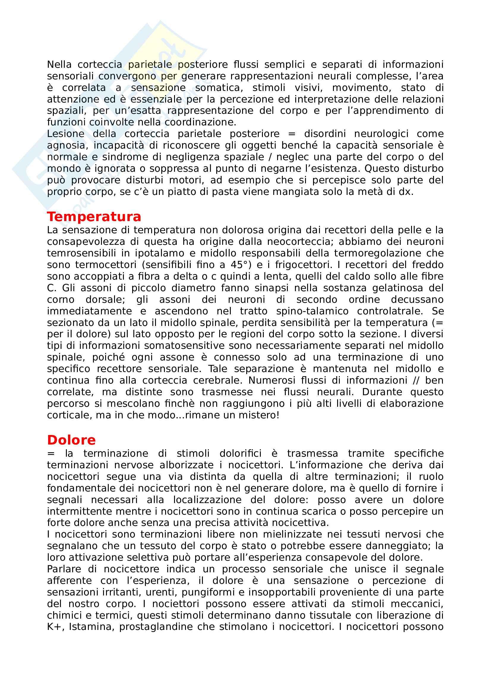 Sistema somatosensoriale Pag. 6