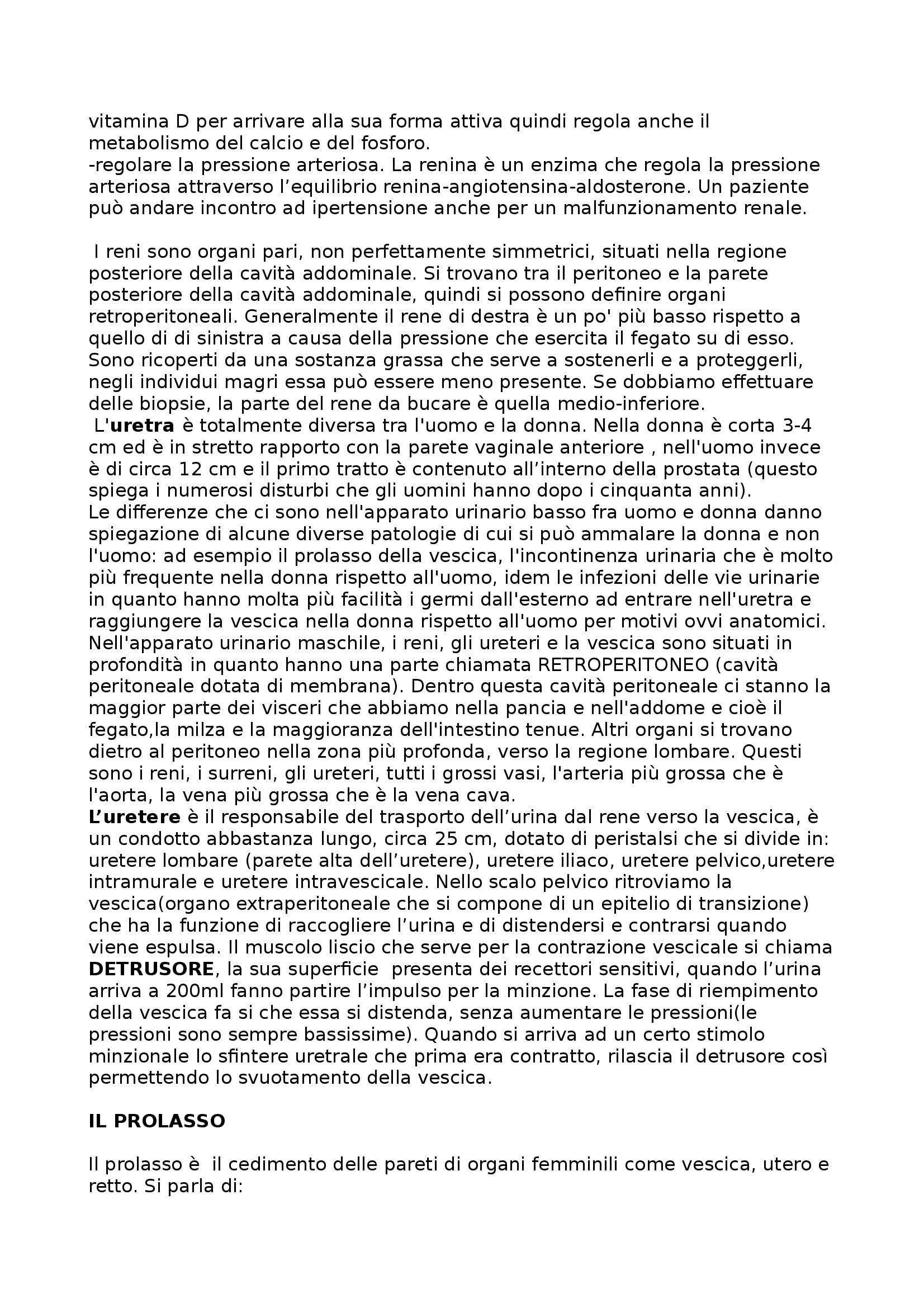 Riassunto esame Urologia, prof. Volpe Pag. 2