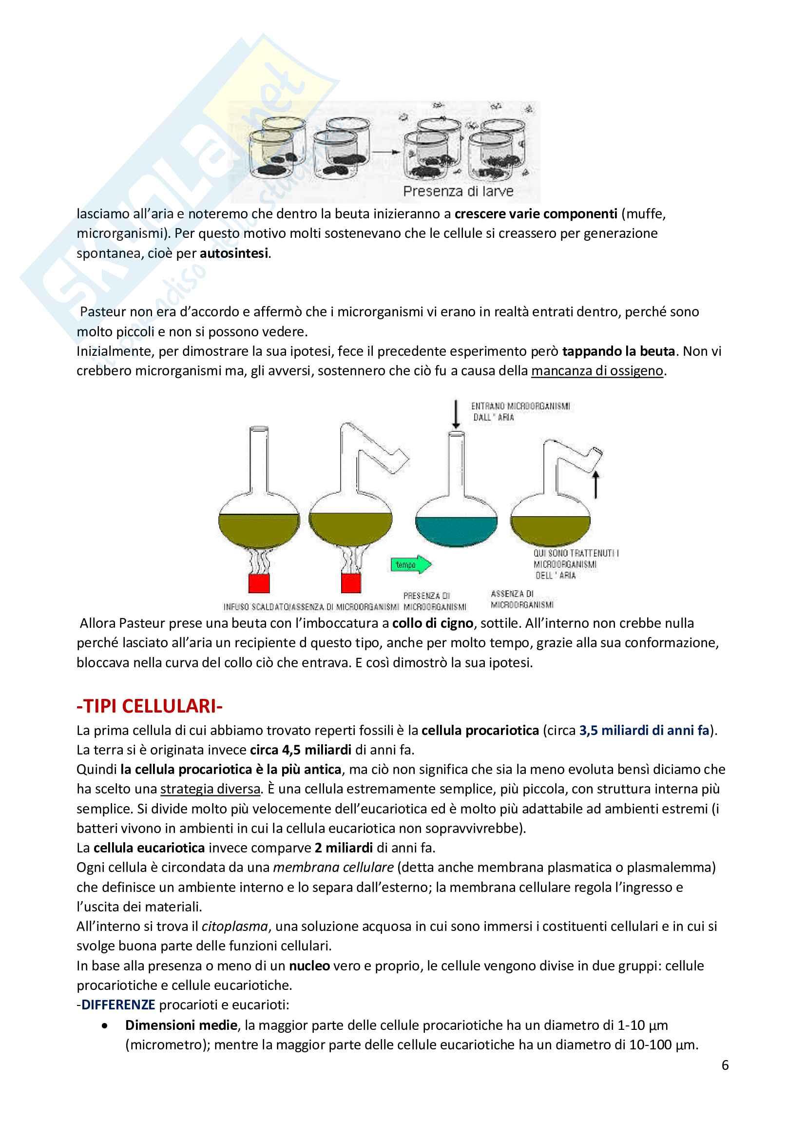 Riassunto di Biologia: utile alla preparazione ai test d'ammissione per le facoltà scientifiche Pag. 6