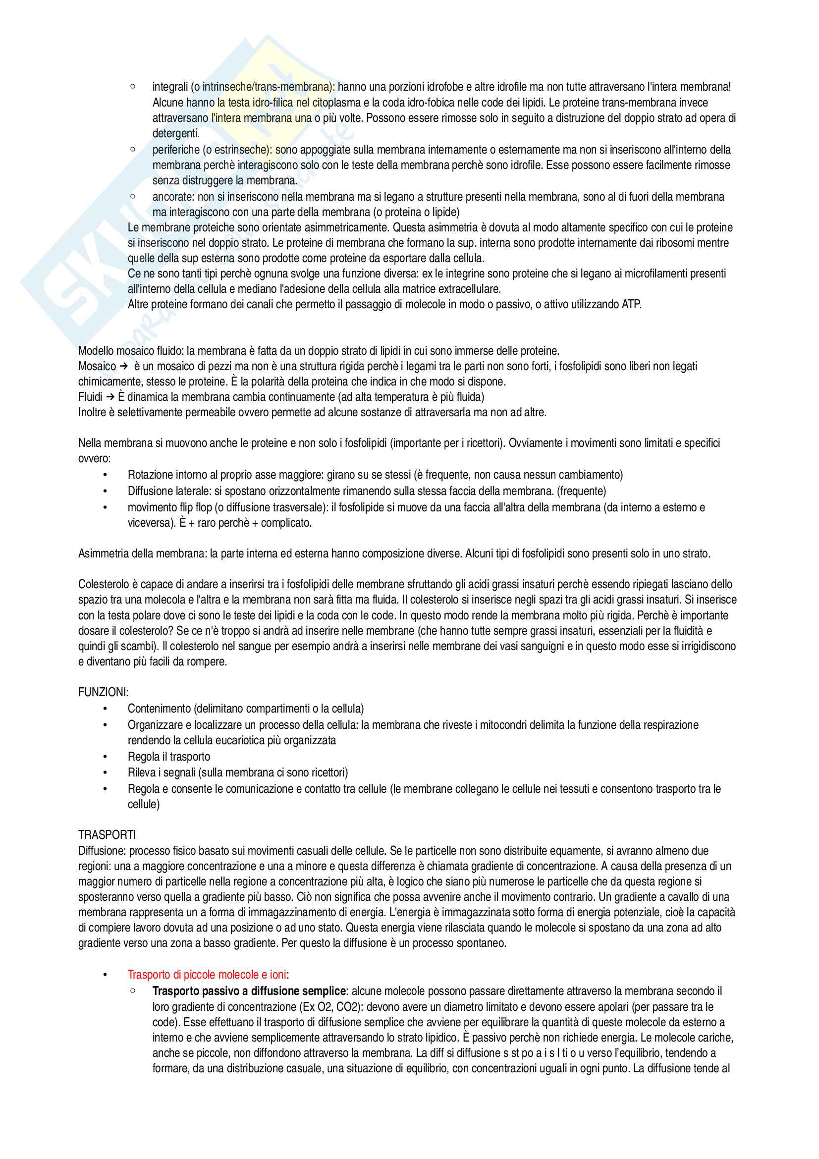 Biologia e Genetica- Esame completo Pag. 6