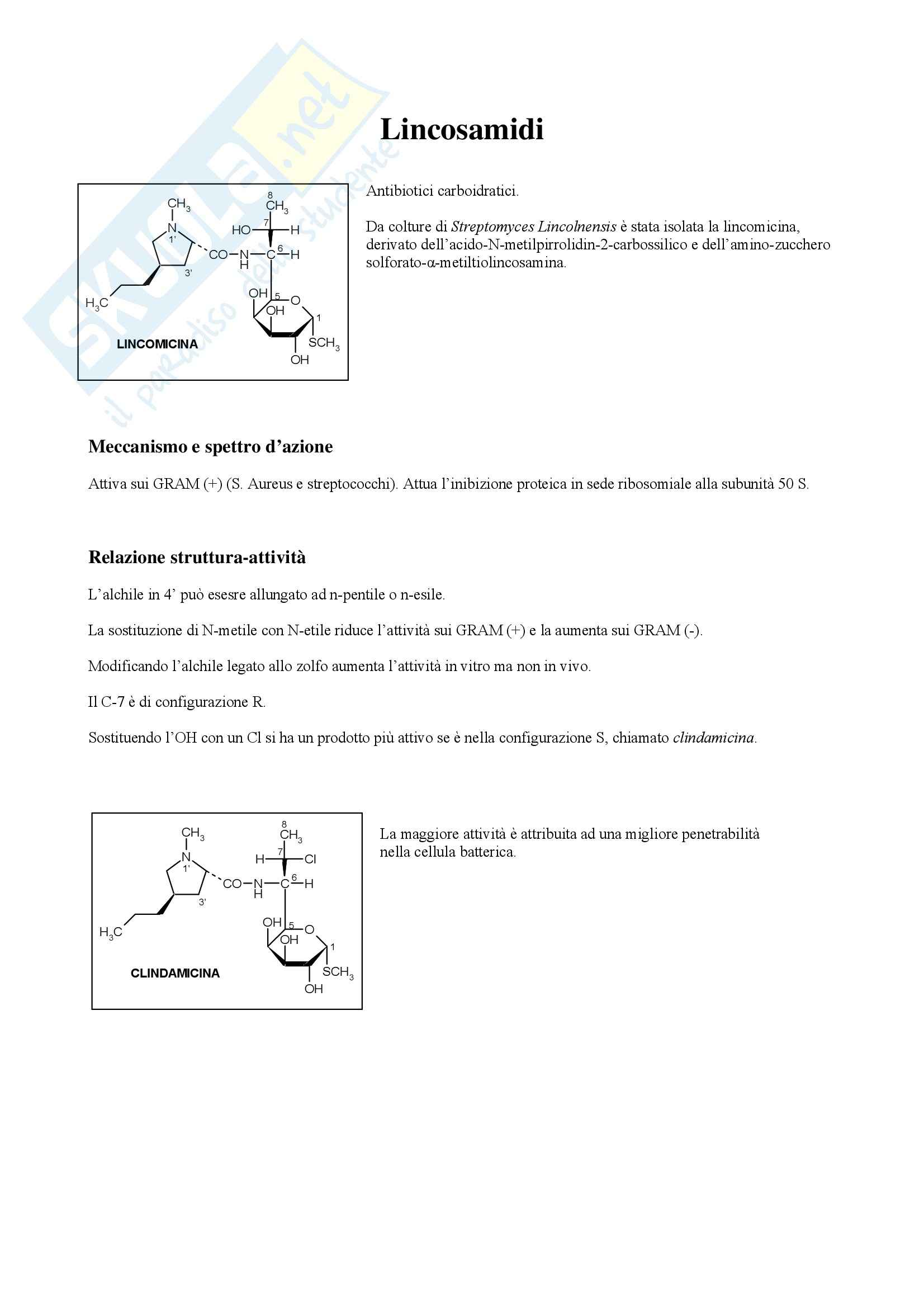 Chimica farmaceutica e tossicologica - lincosamidi