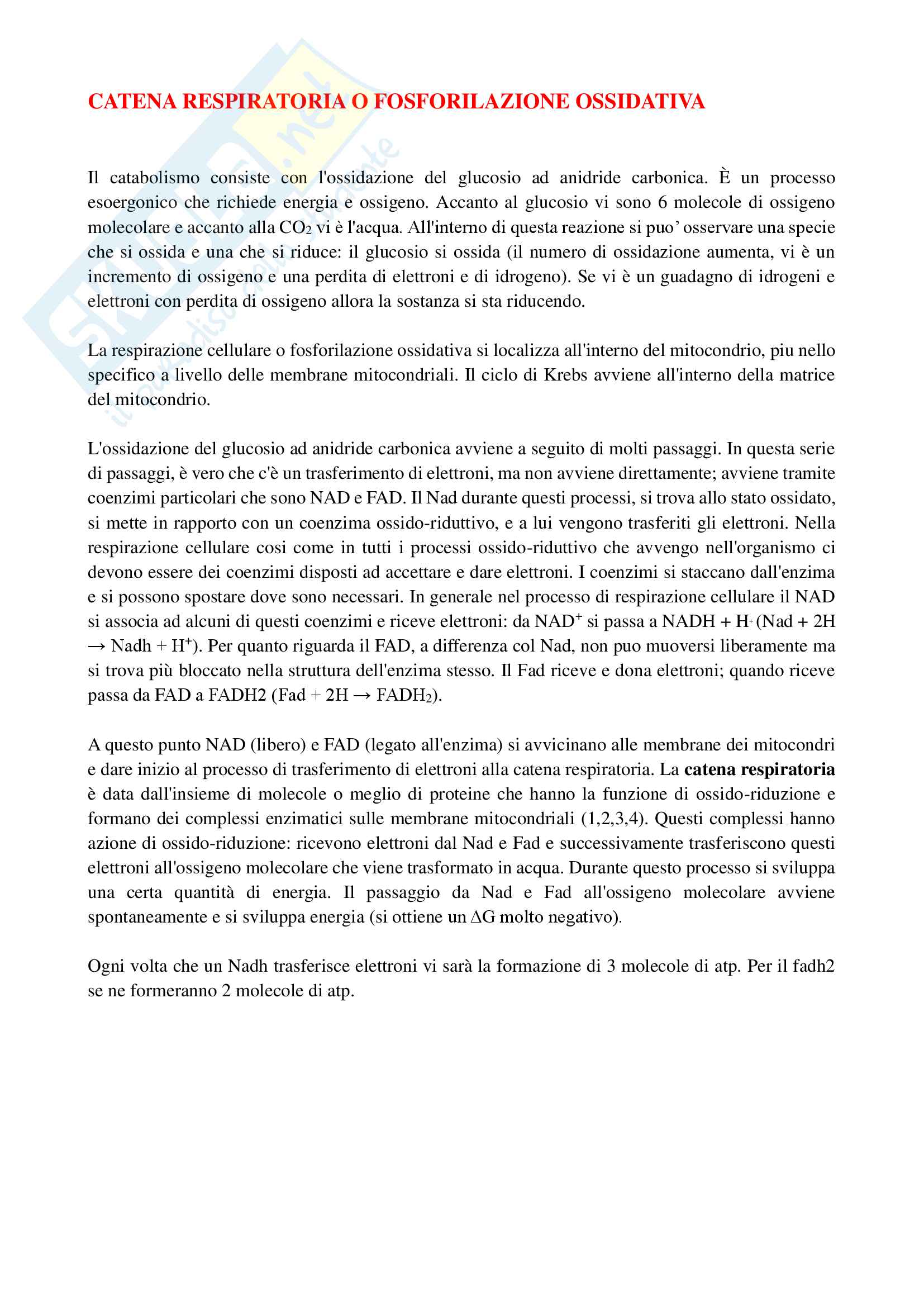 Appunti di Biochimica (Ciclo di Krebs e fosforilazione ossidativa)