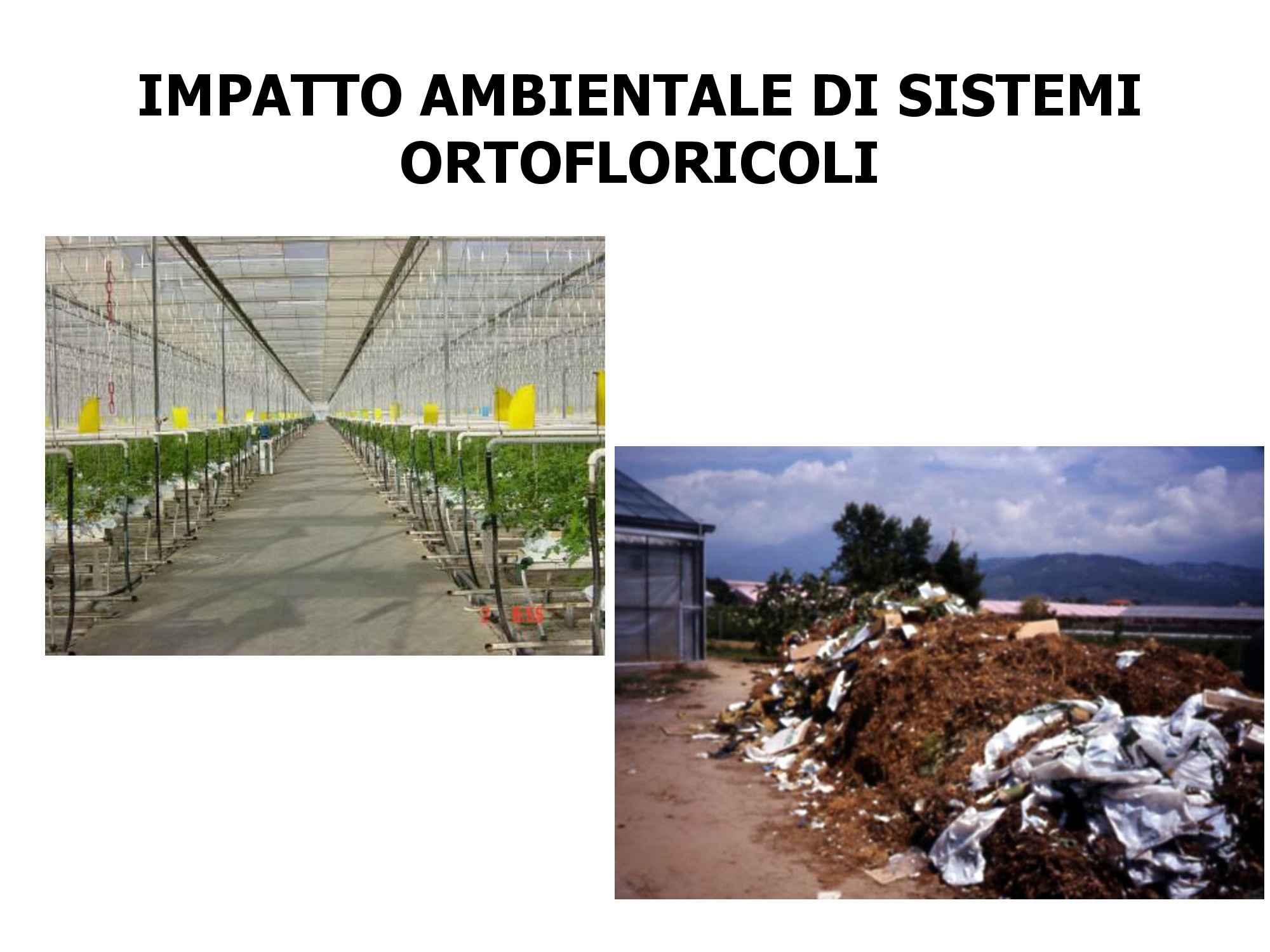 dispensa F. Malorgio Orticoltura e Floricoltura