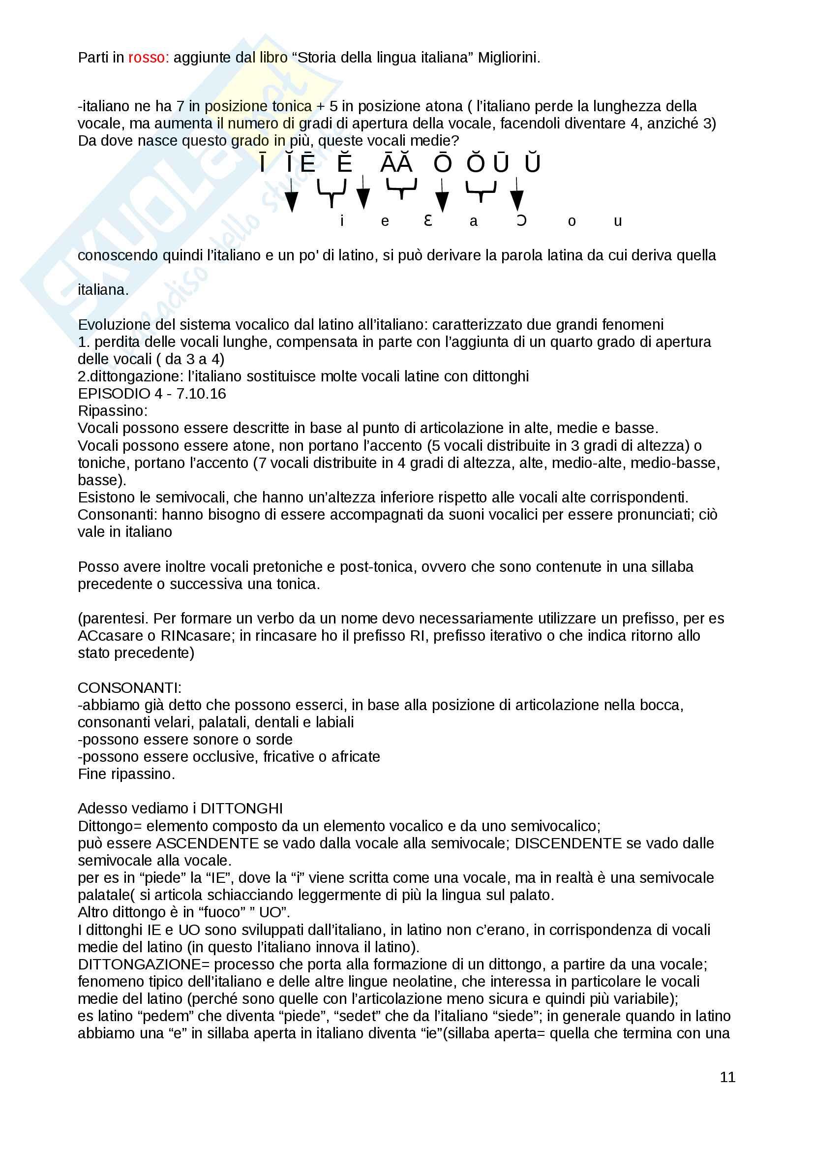 Riassunto esame linguistica italiana prof. Vicario Pag. 11