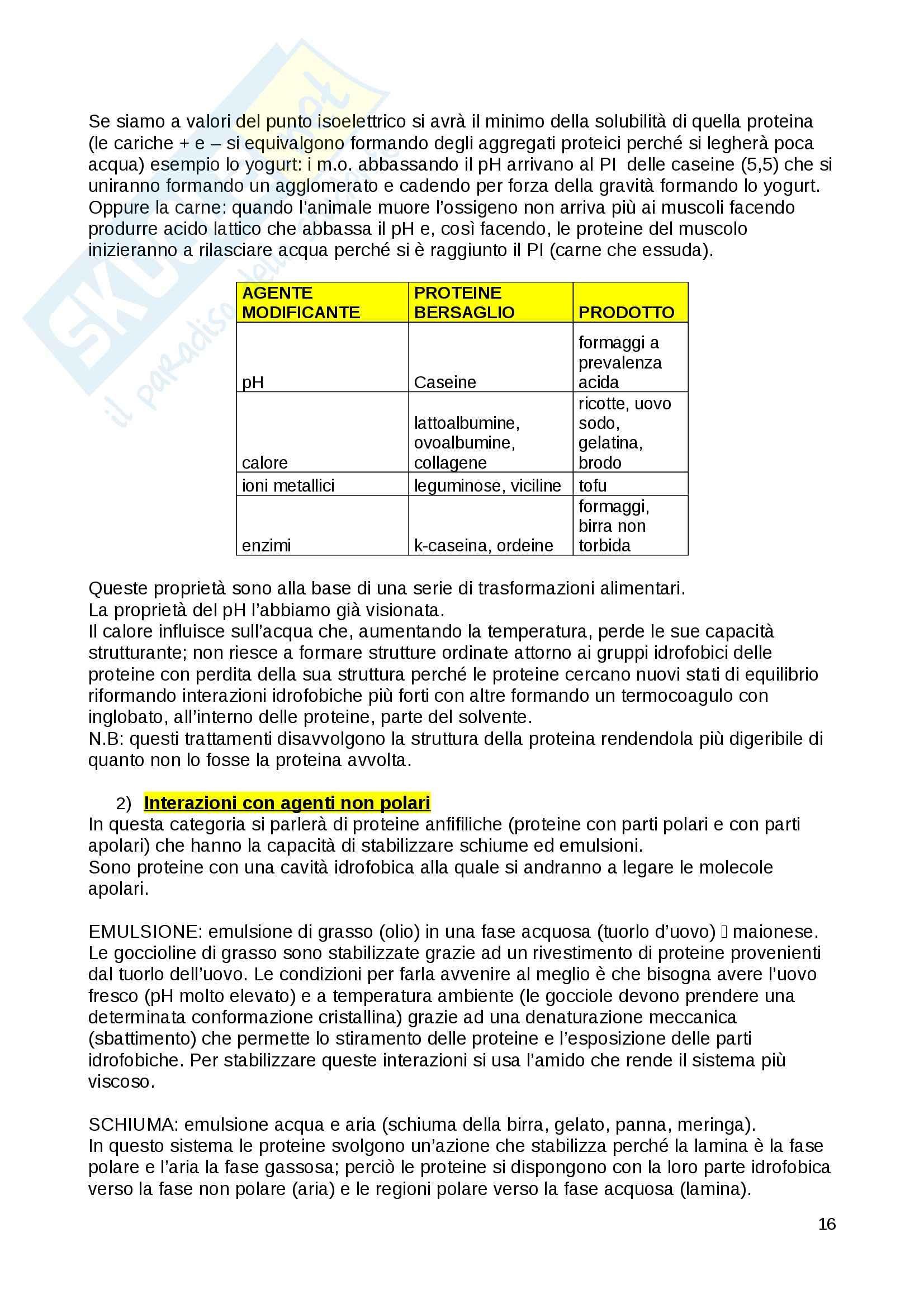 Biochimica generale - Appunti Pag. 16