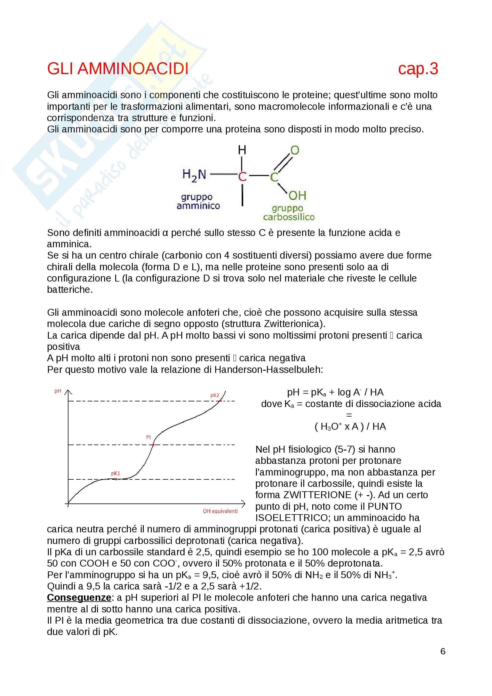 Biochimica generale - Appunti Pag. 6