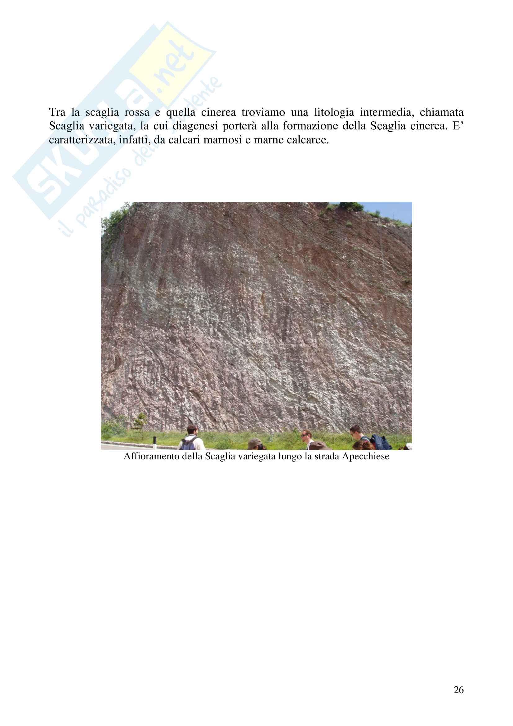 Relazione geologica e paleontologica di Piobbico Pag. 26