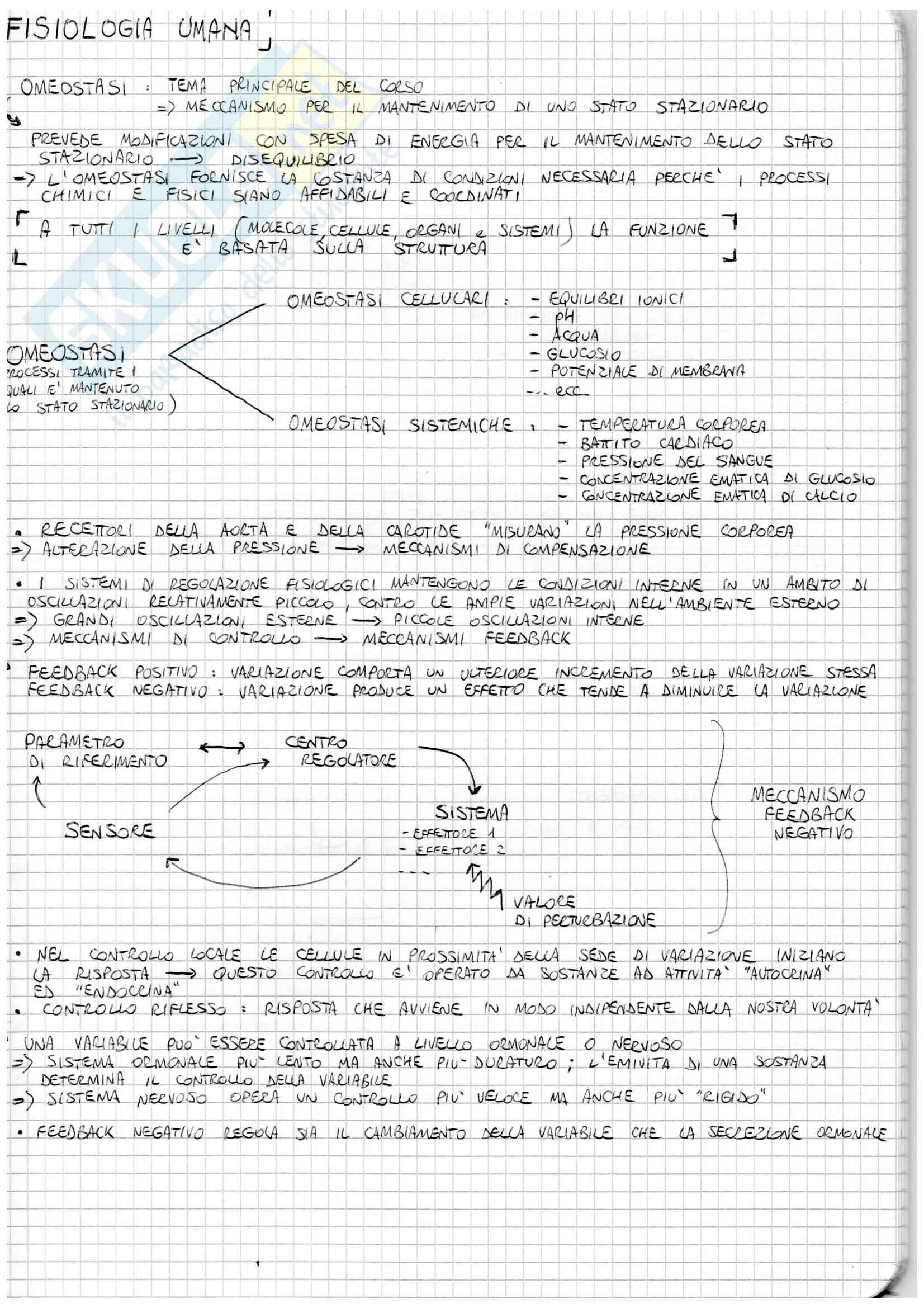 appunto D. Ragozzino Fisiologia umana