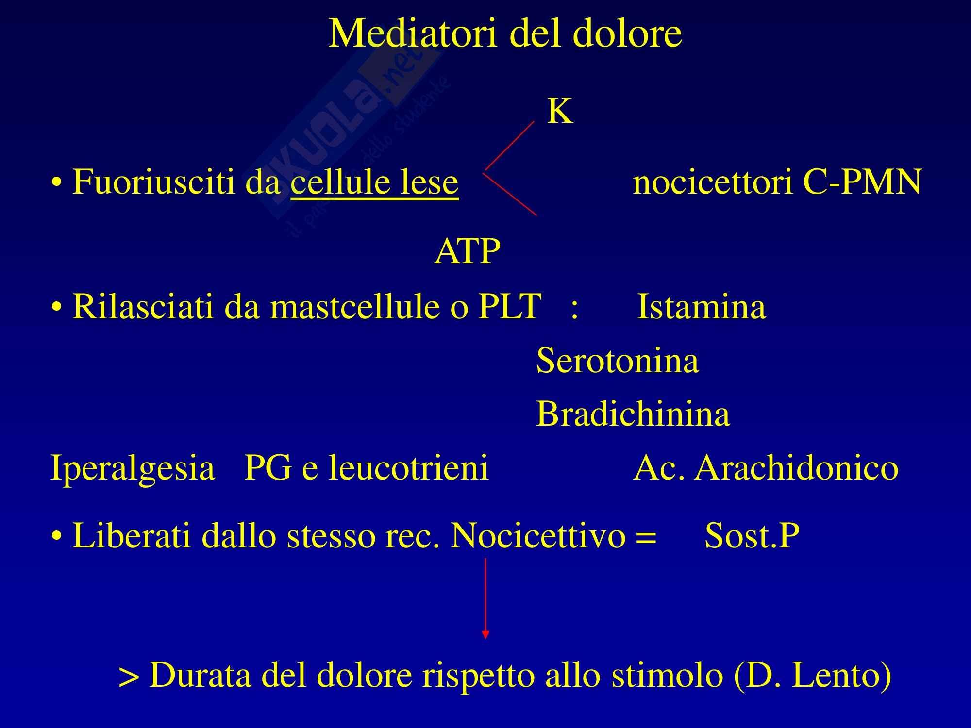 Anestesia - Mediatori del dolore