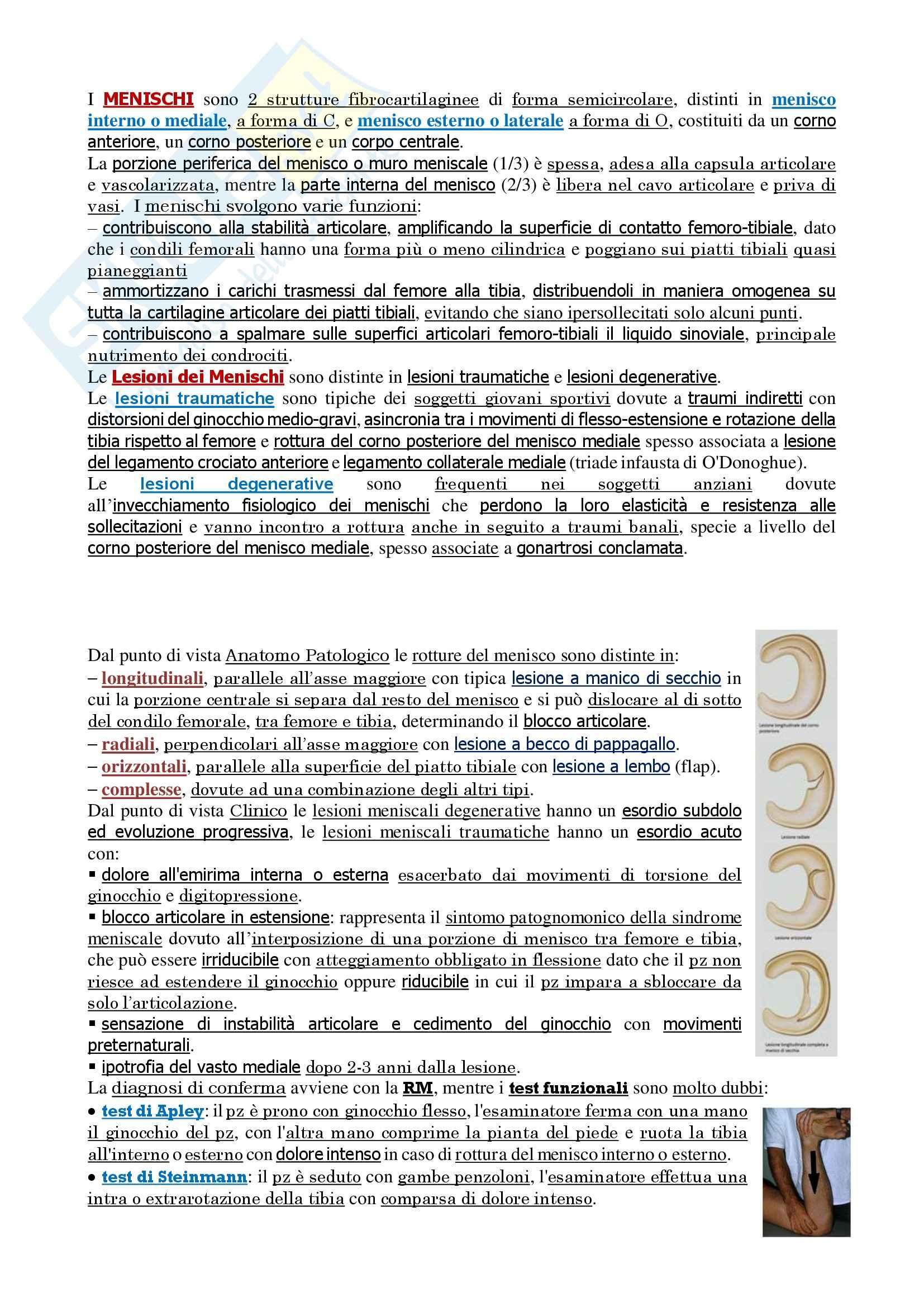 Malattie dell'apparato locomotore - Corso completo Pag. 91