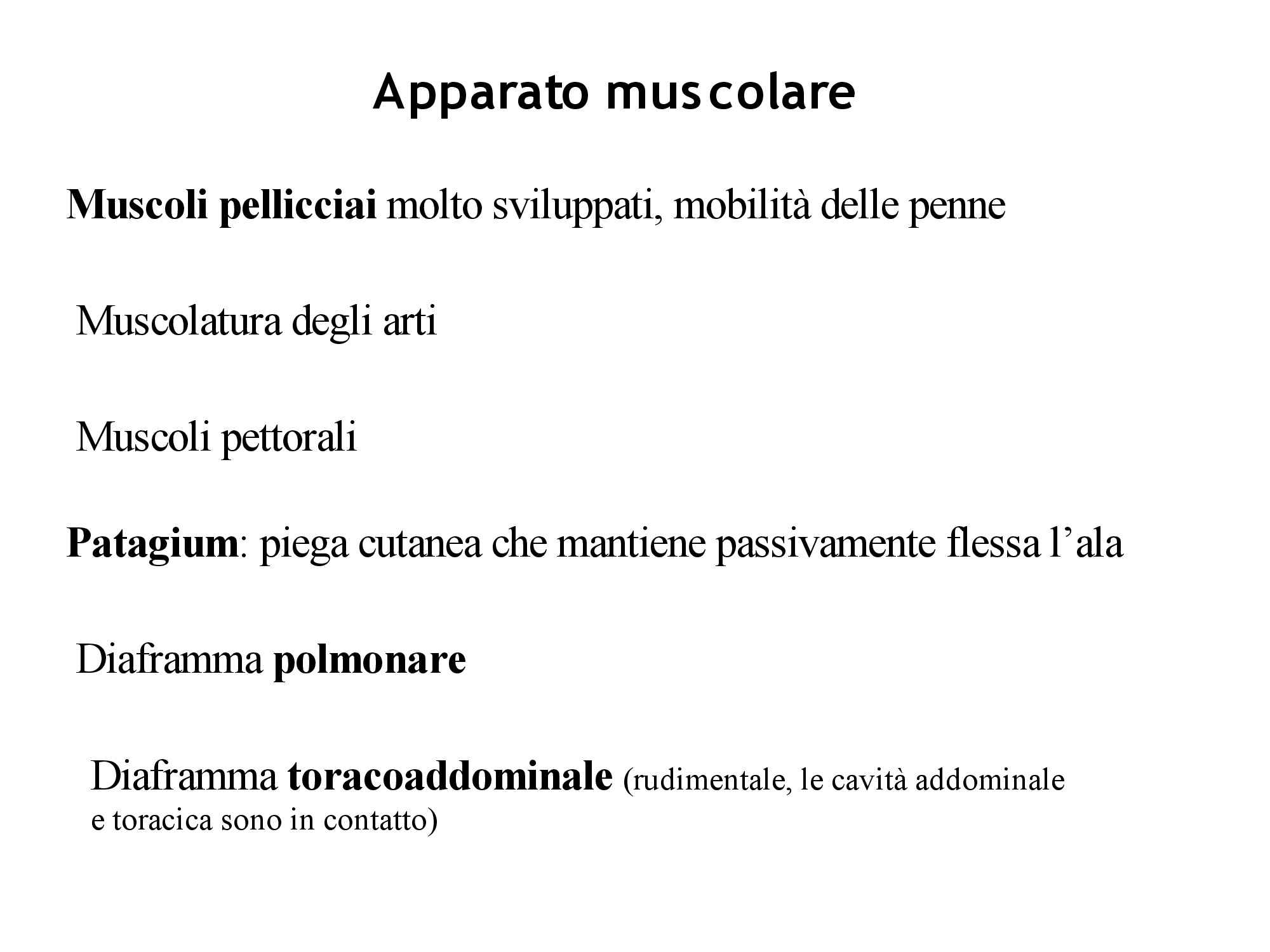 Uccelli - Apparato muscolare Pag. 1