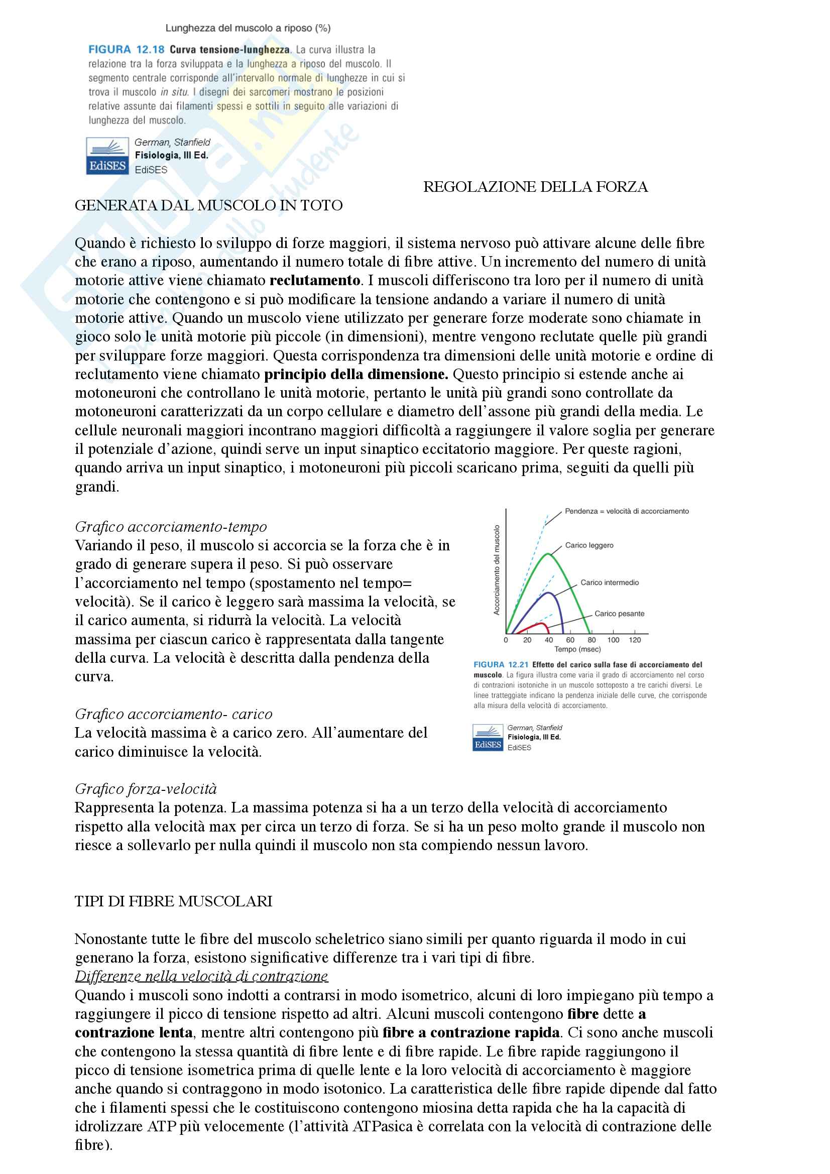 Fisiologia Pag. 21