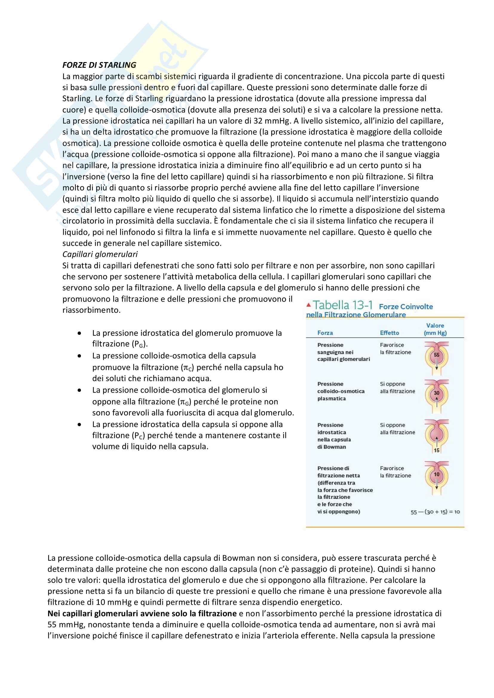 Fisiologia Pag. 46