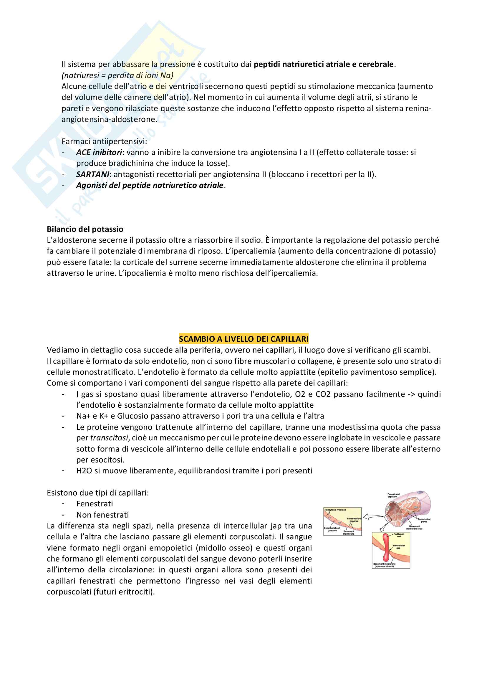 Fisiologia Pag. 61