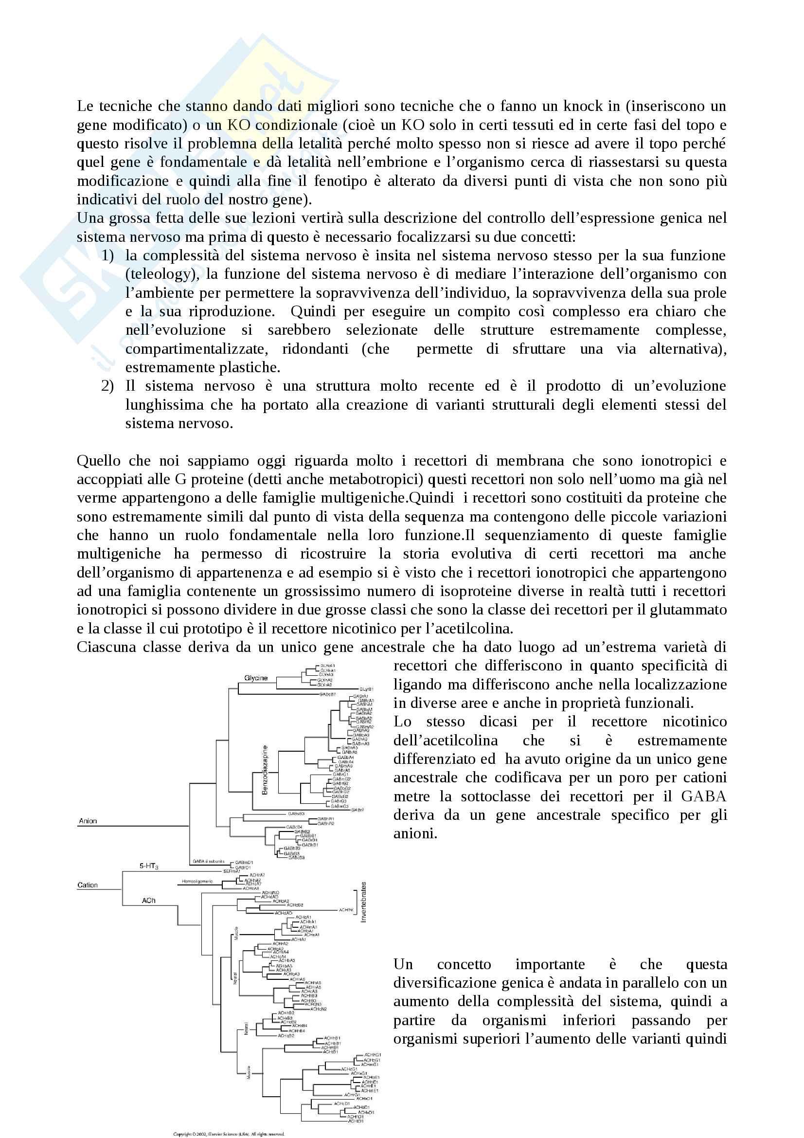 Tecniche Biomolecolari per lo studio del sistema nervoso Pag. 2