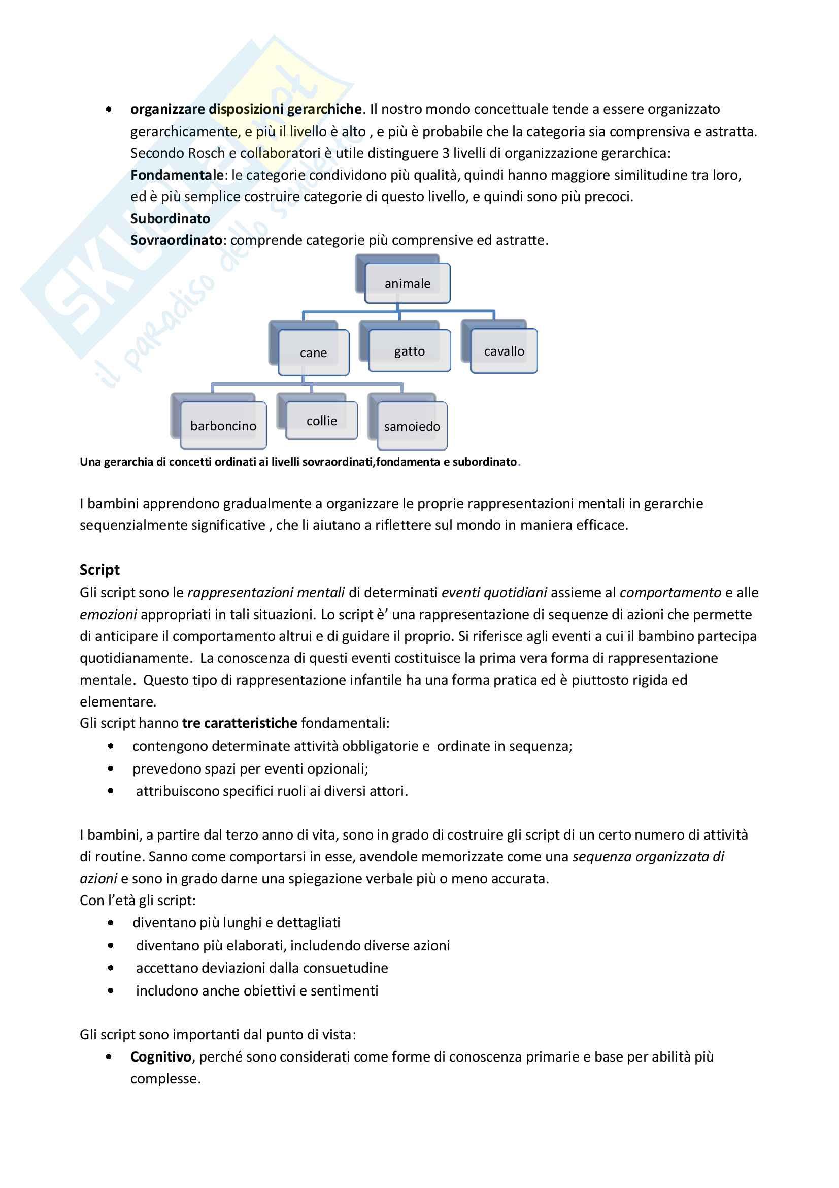 Teoria Human Information Processing di psicologia dello sviluppo Pag. 6