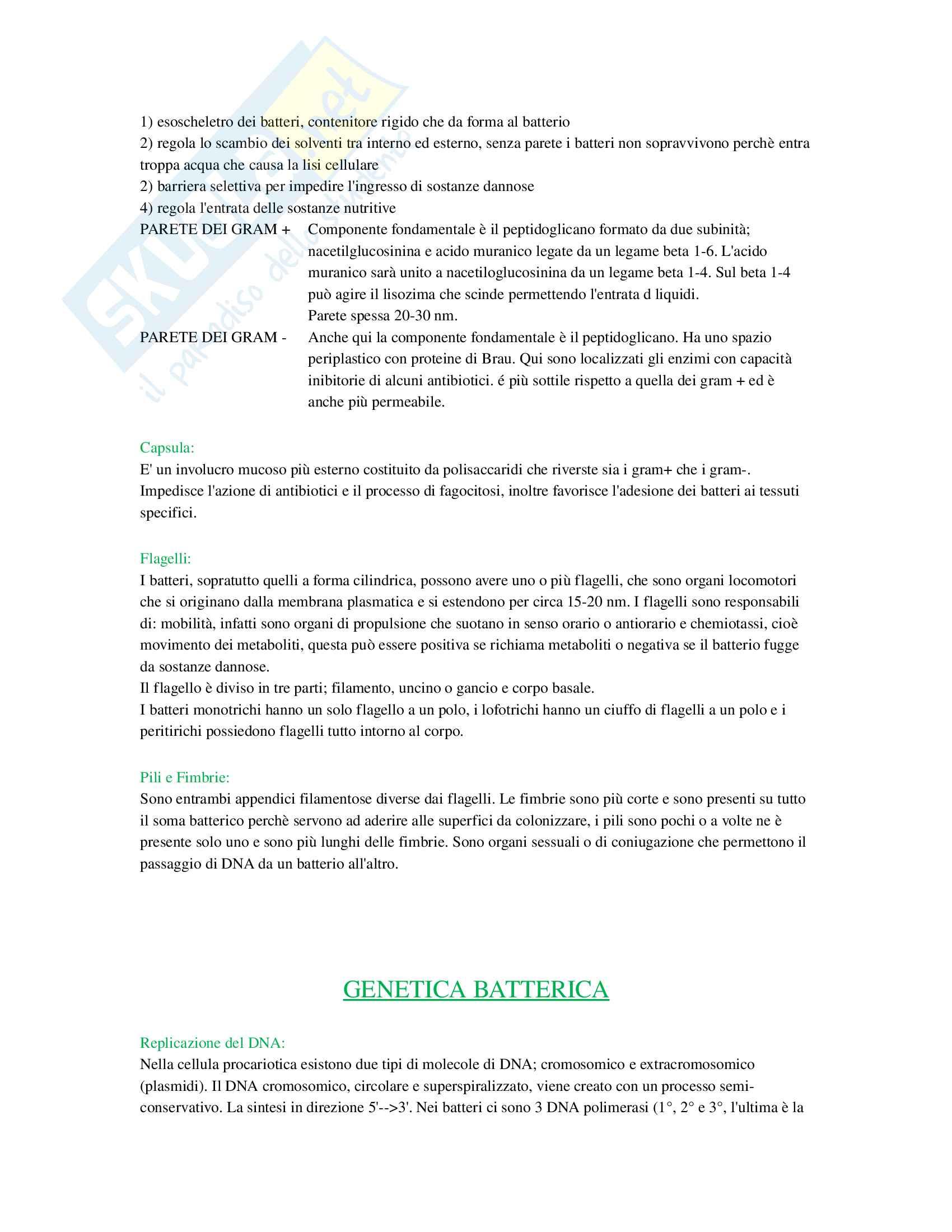 Microbiologia Pag. 2