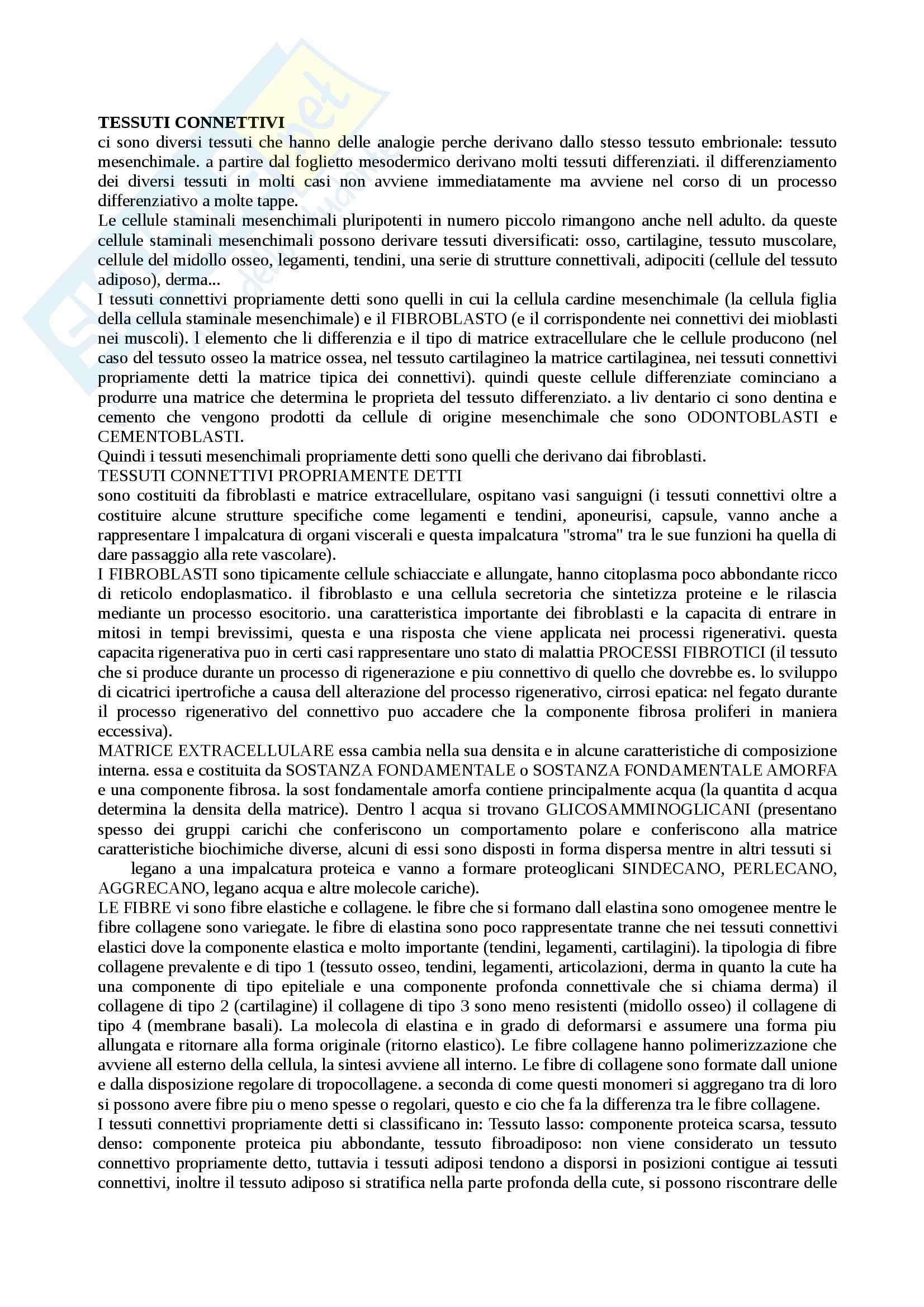 appunto L. Tamagnone Anatomia  e istologia