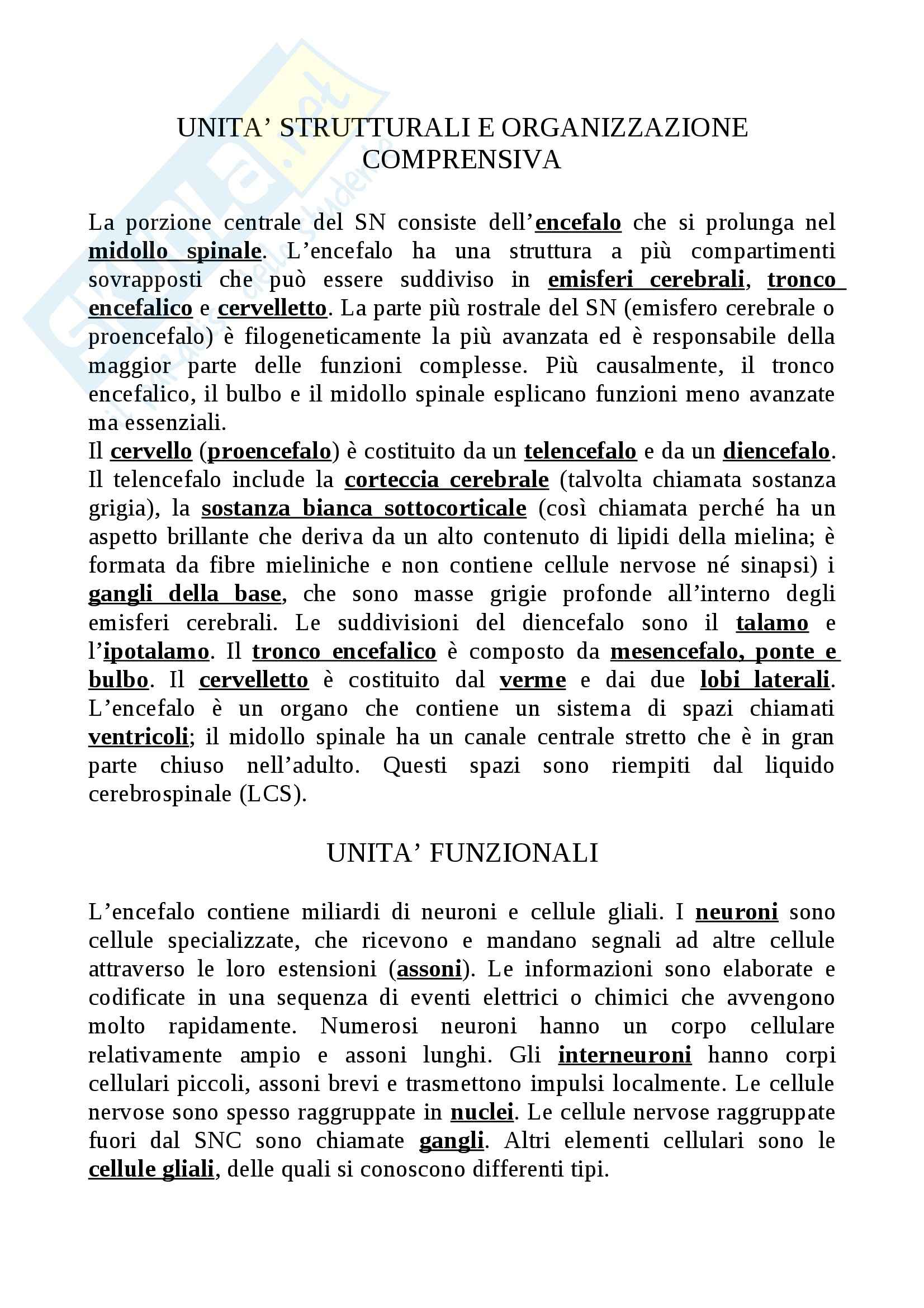 Riassunto esame Struttura e funzionamento del sistema nervoso, prof. Raffaele, libro consigliato Neuroanatomia clinica, Waxman Pag. 2