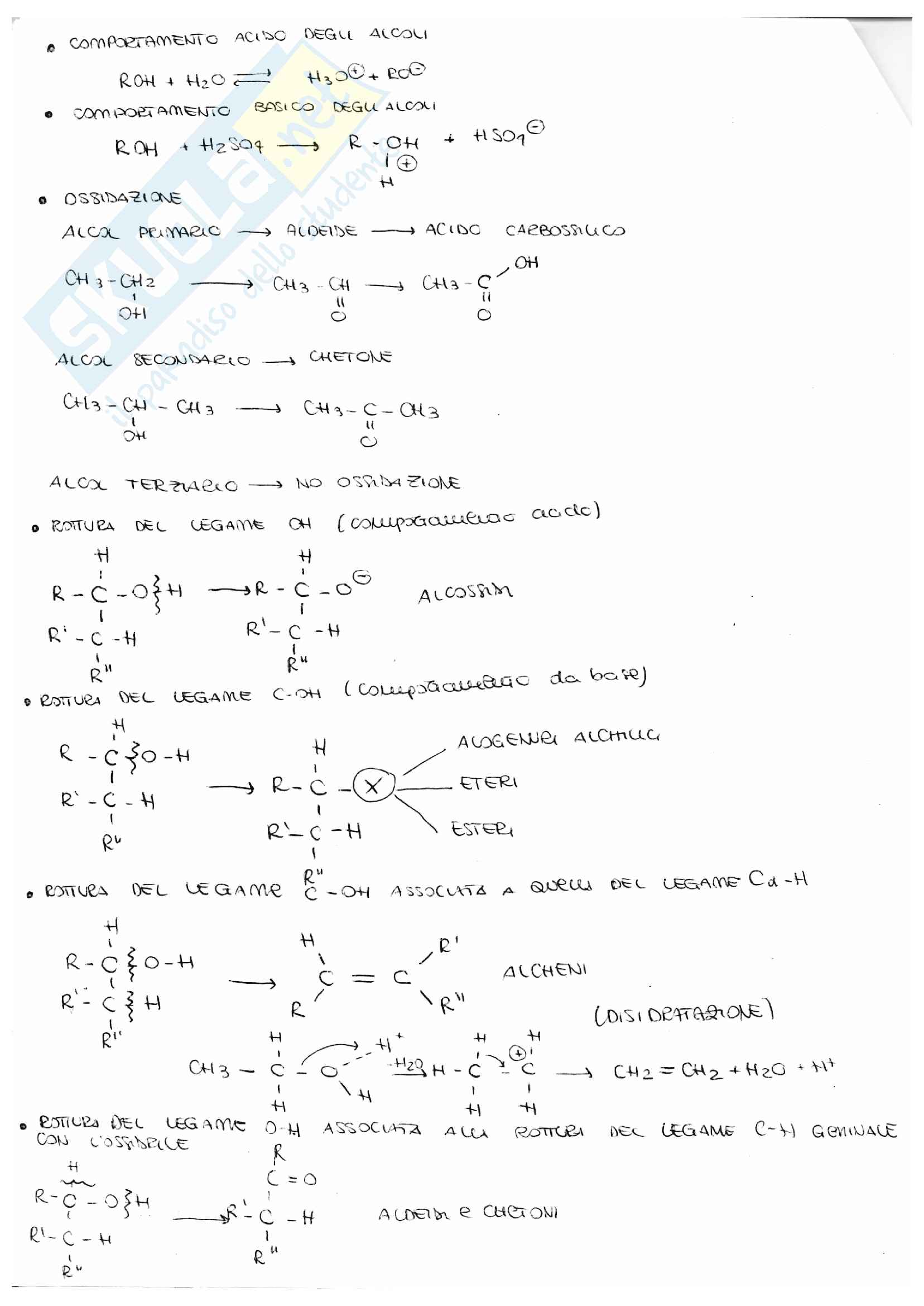 Schema reazioni chimica organica Pag. 6