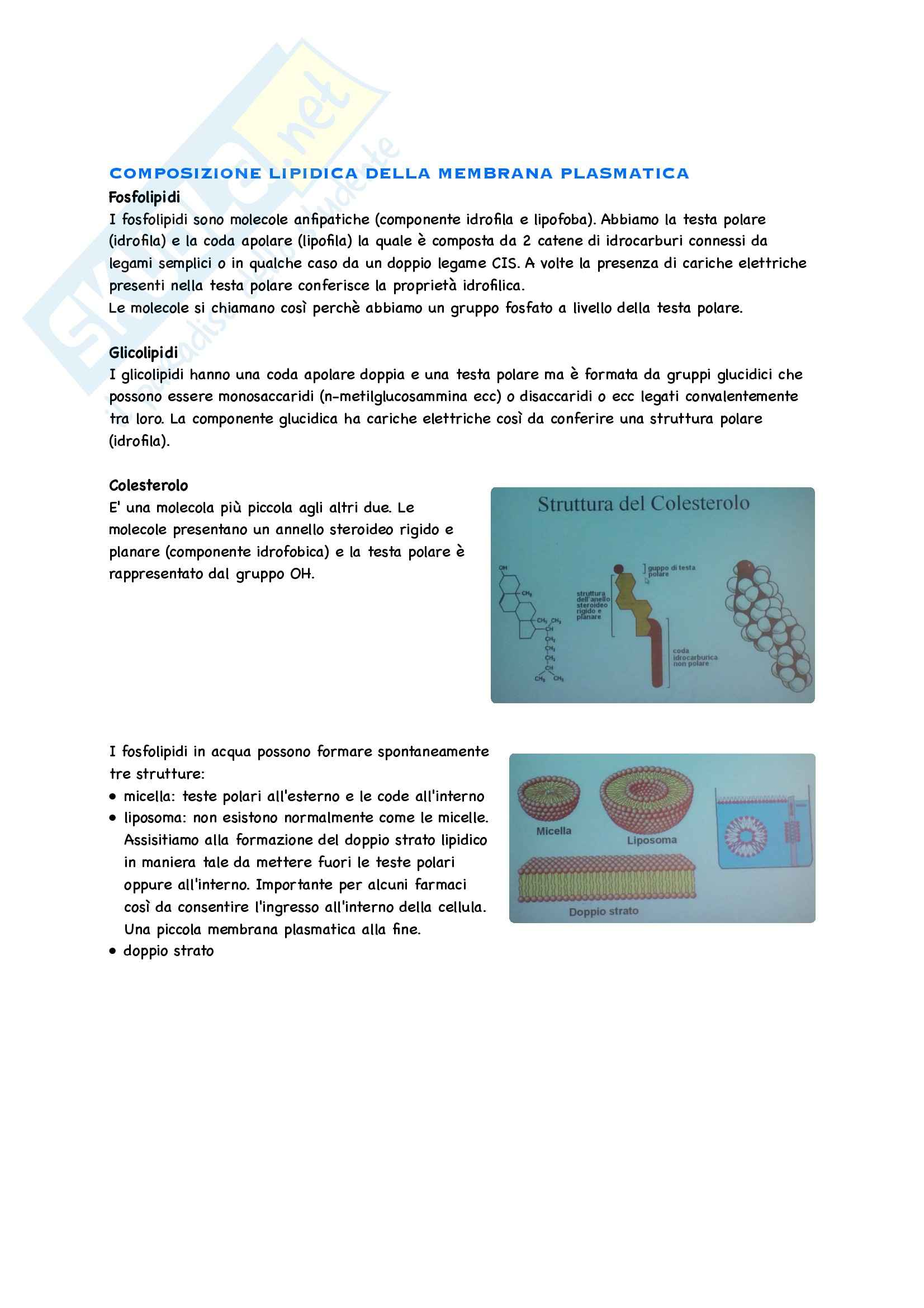 Fisiologia Cellulare Pag. 2