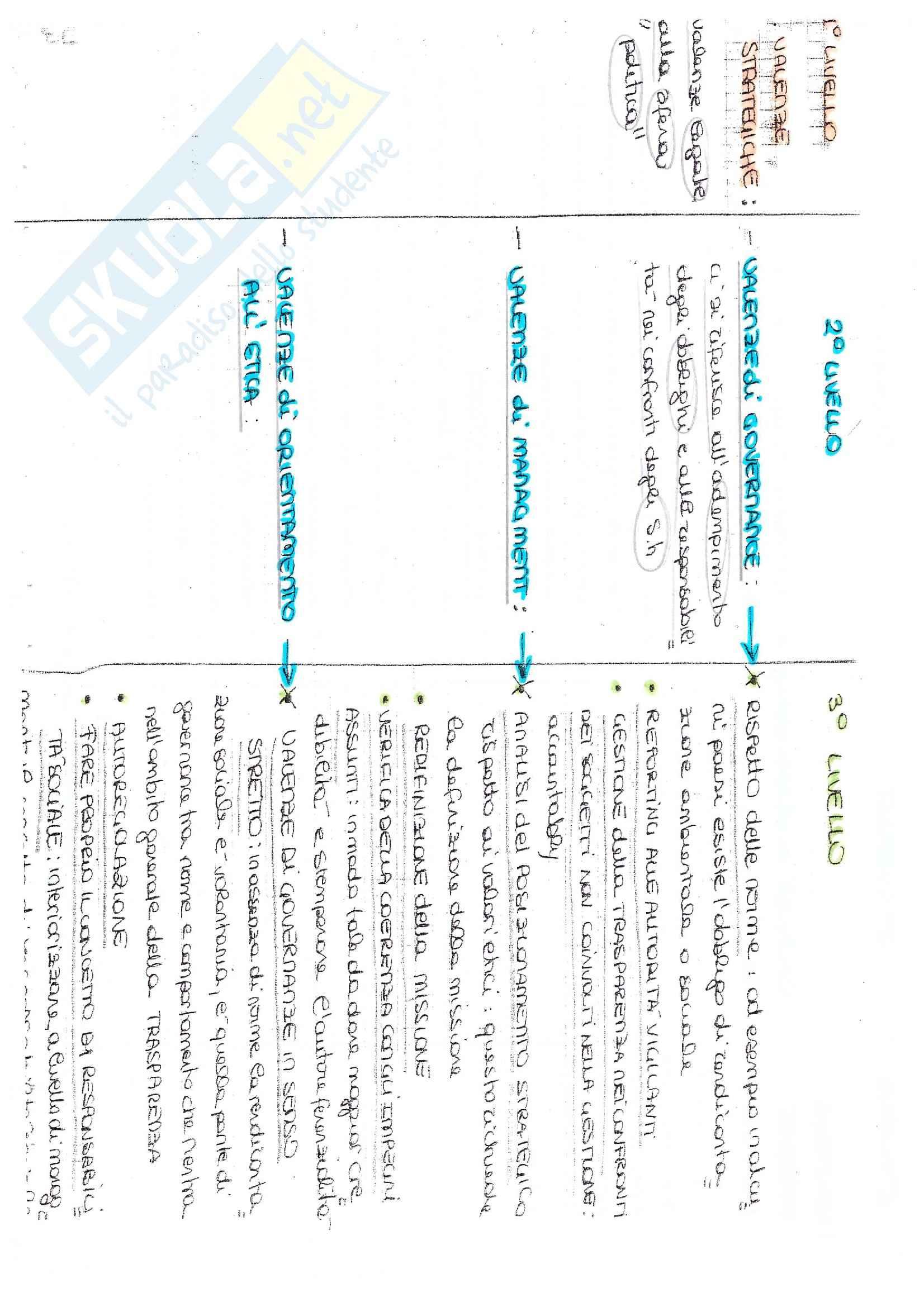 Bilancio Sociale - Appunti e Soluzioni Pag. 11
