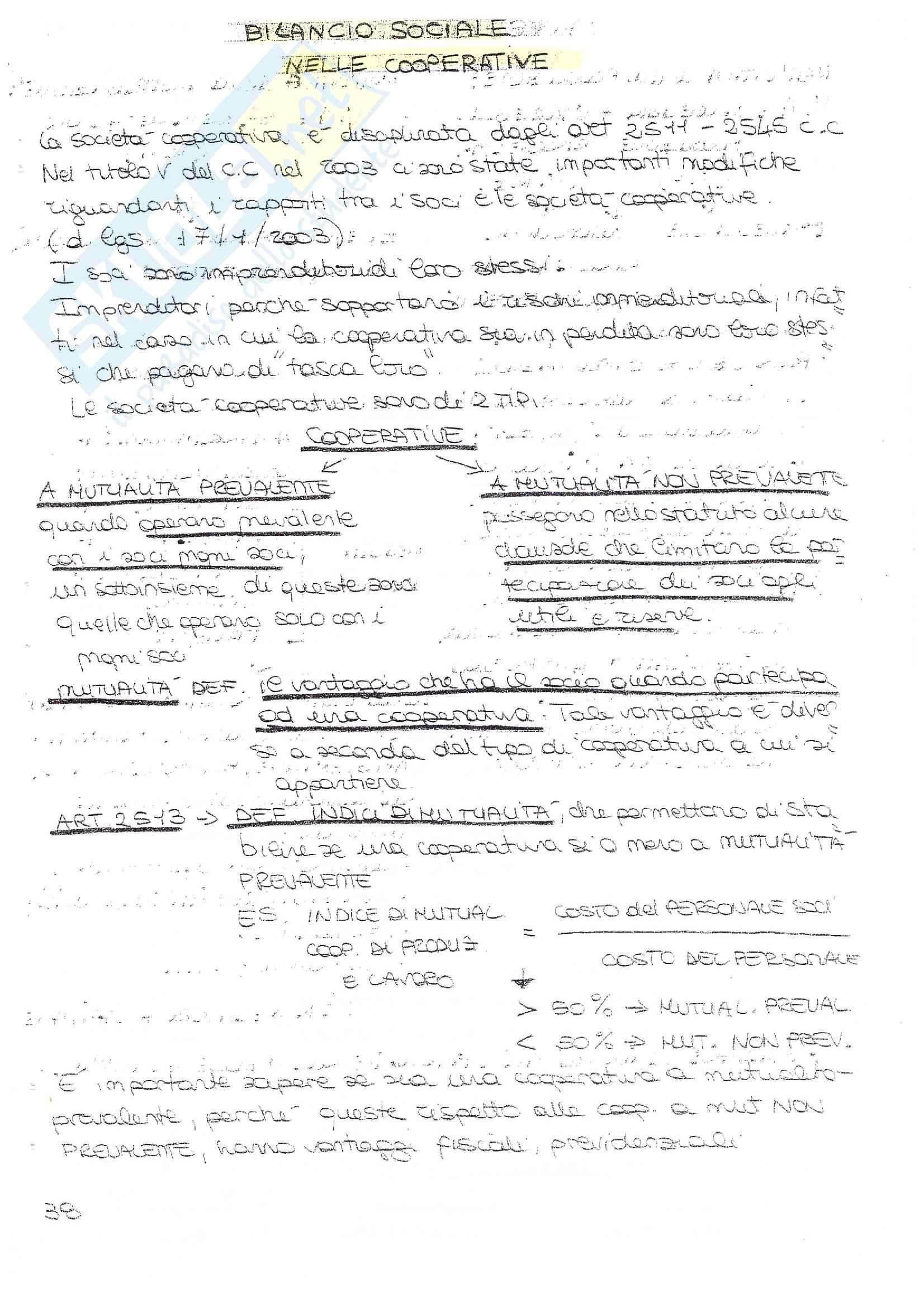 Bilancio Sociale - Appunti e Soluzioni Pag. 21