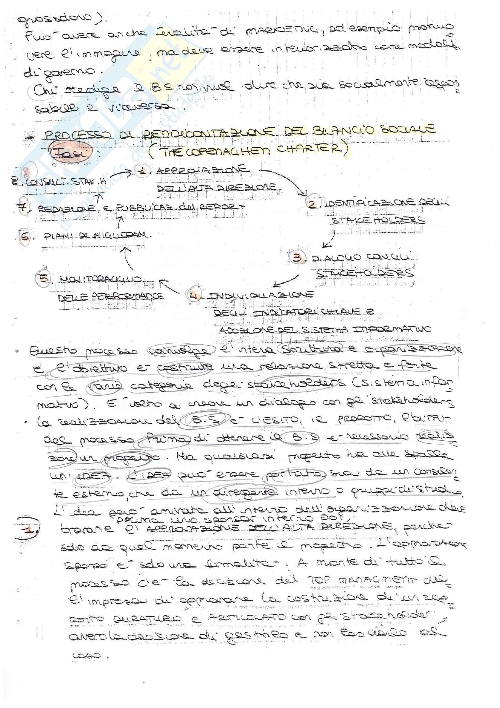 Bilancio Sociale - Appunti e Soluzioni Pag. 6