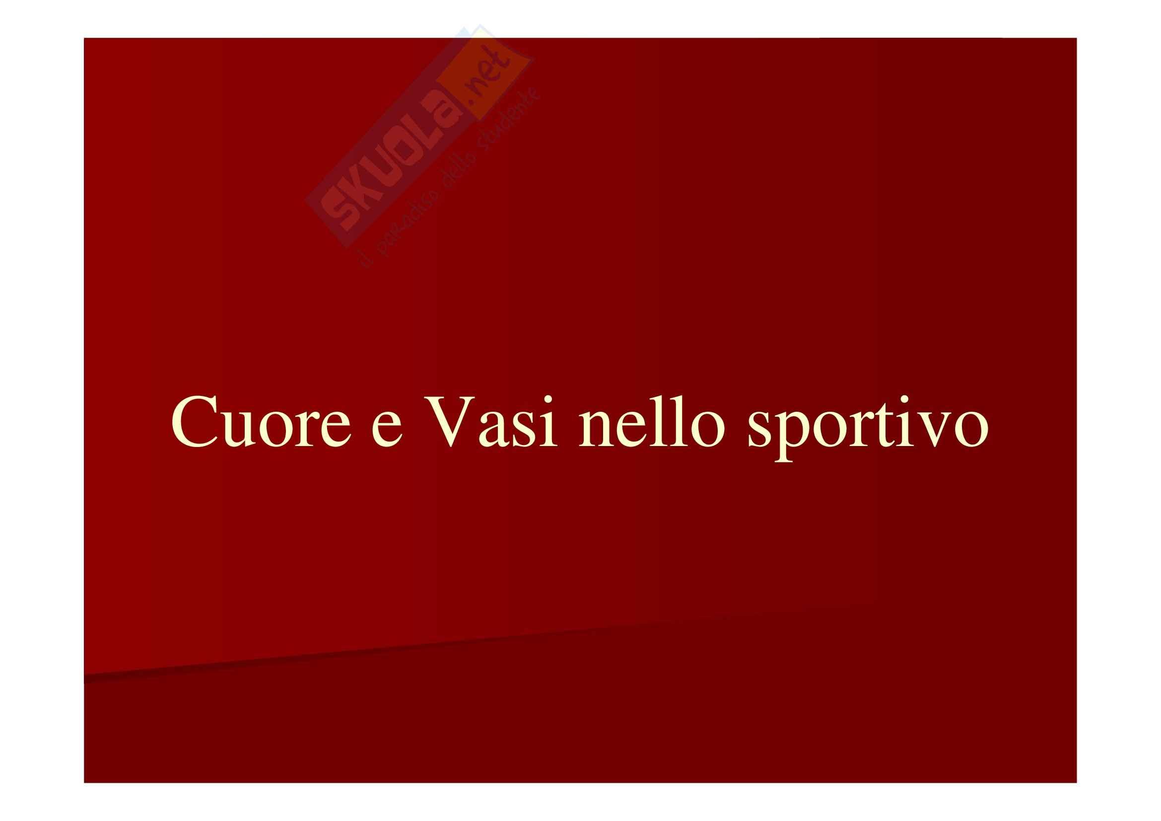 Cuore e vasi nello sportivo, Anatomia Umana