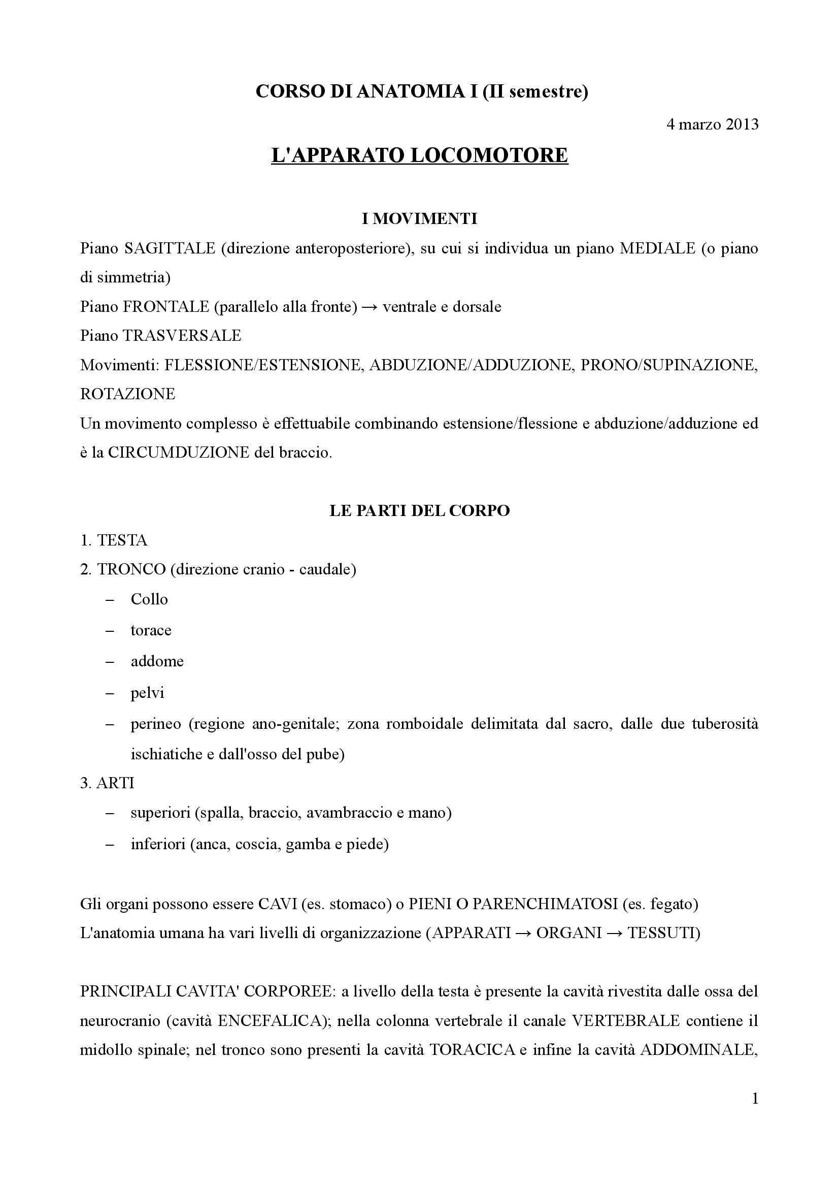 appunto A. Vercelli Anatomia I