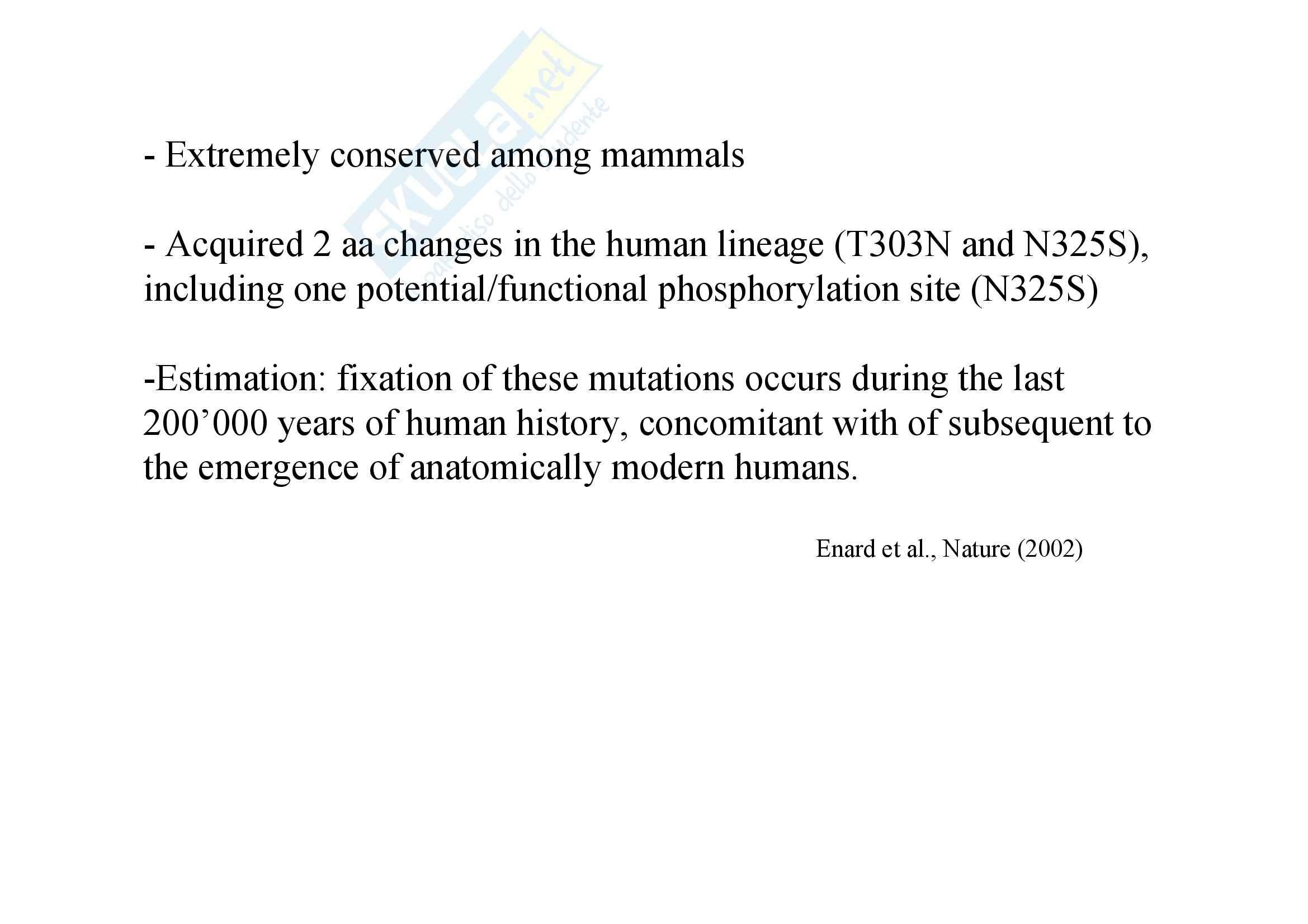 Genetica umana - evoluzione della specie - Appunti Pag. 71