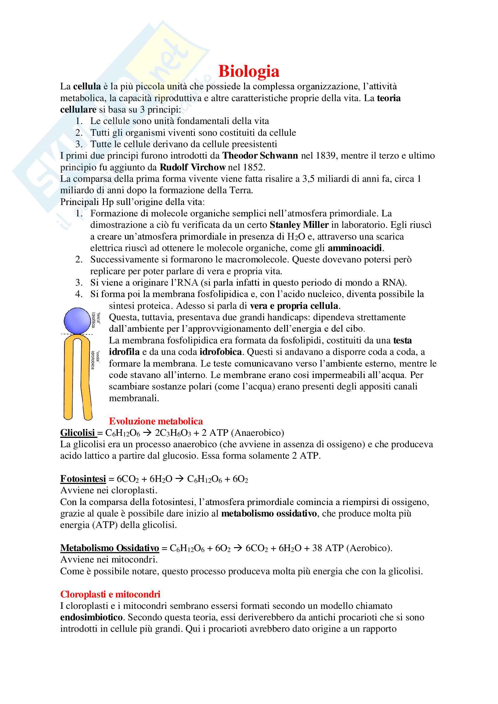 Biologia Umana - Appunti Completi